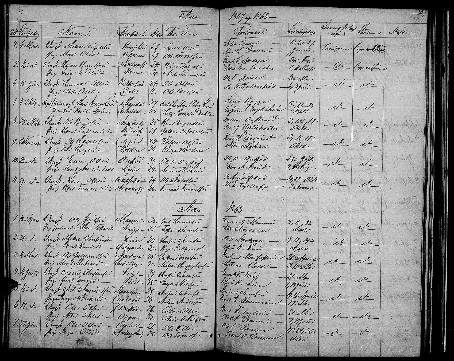 SAH, Nord-Aurdal prestekontor, Klokkerbok nr. 2, 1842-1877, s. 207