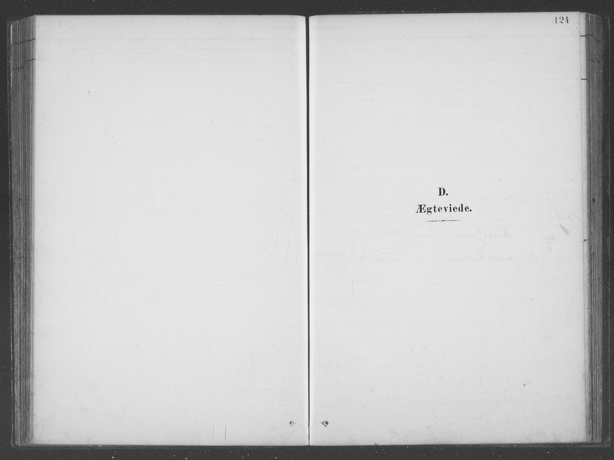 SAB, Aurland Sokneprestembete*, Ministerialbok nr. B  1, 1880-1909, s. 124