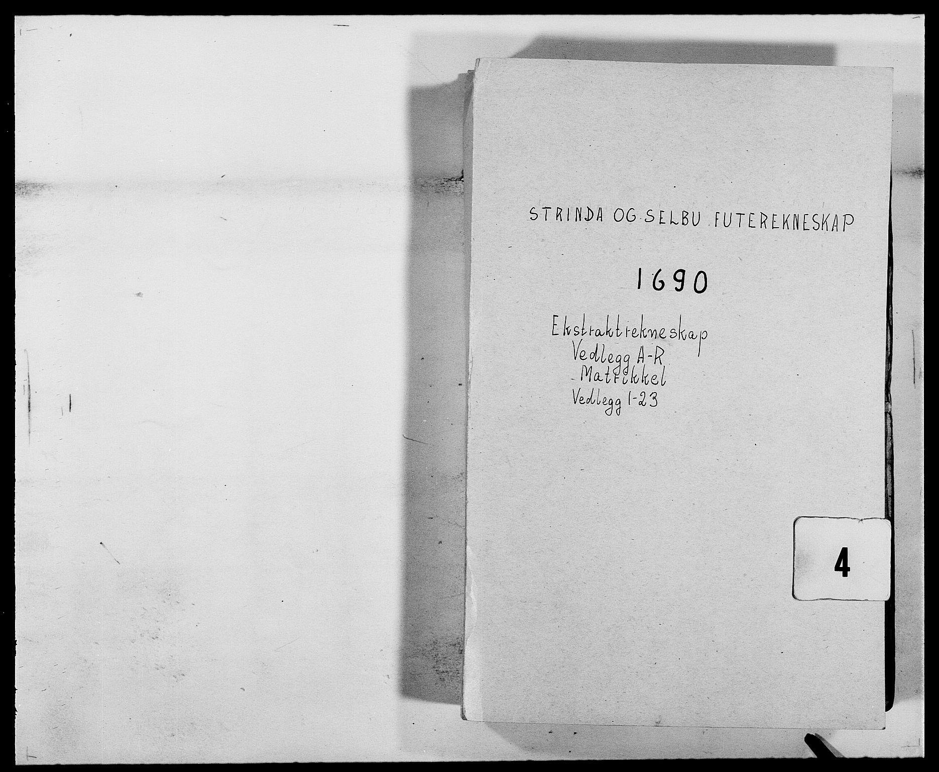 RA, Rentekammeret inntil 1814, Reviderte regnskaper, Fogderegnskap, R61/L4102: Fogderegnskap Strinda og Selbu, 1689-1690, s. 125