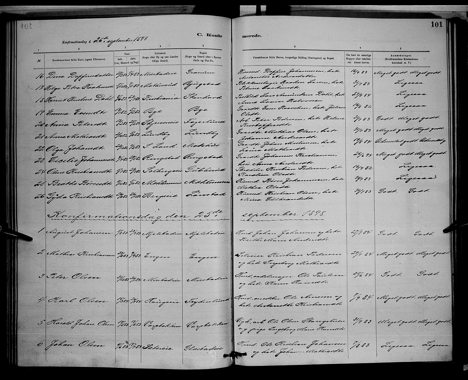 SAH, Vardal prestekontor, H/Ha/Hab/L0008: Klokkerbok nr. 8, 1881-1898, s. 101