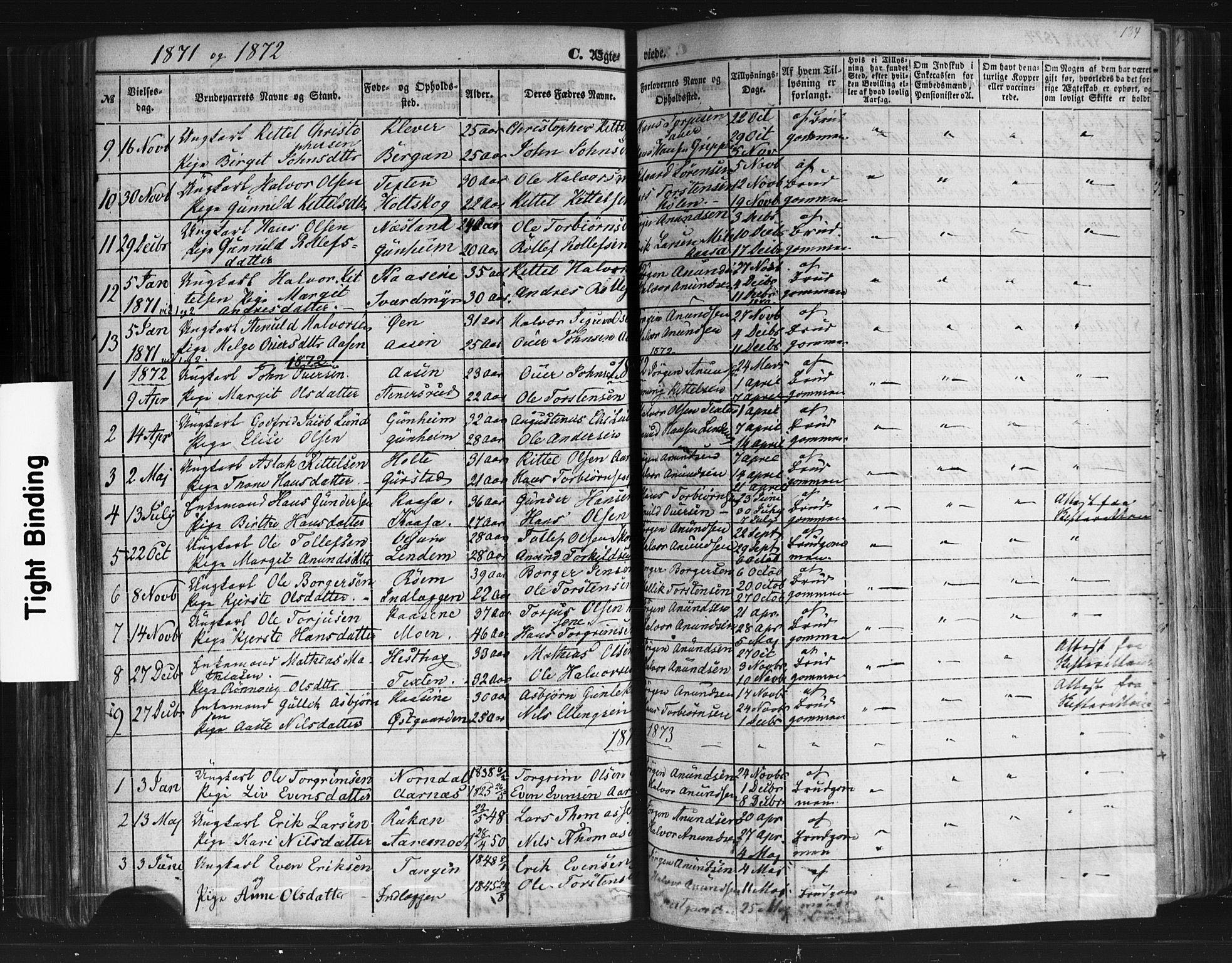 SAKO, Sauherad kirkebøker, F/Fb/L0001: Ministerialbok nr. II 1, 1851-1877, s. 134