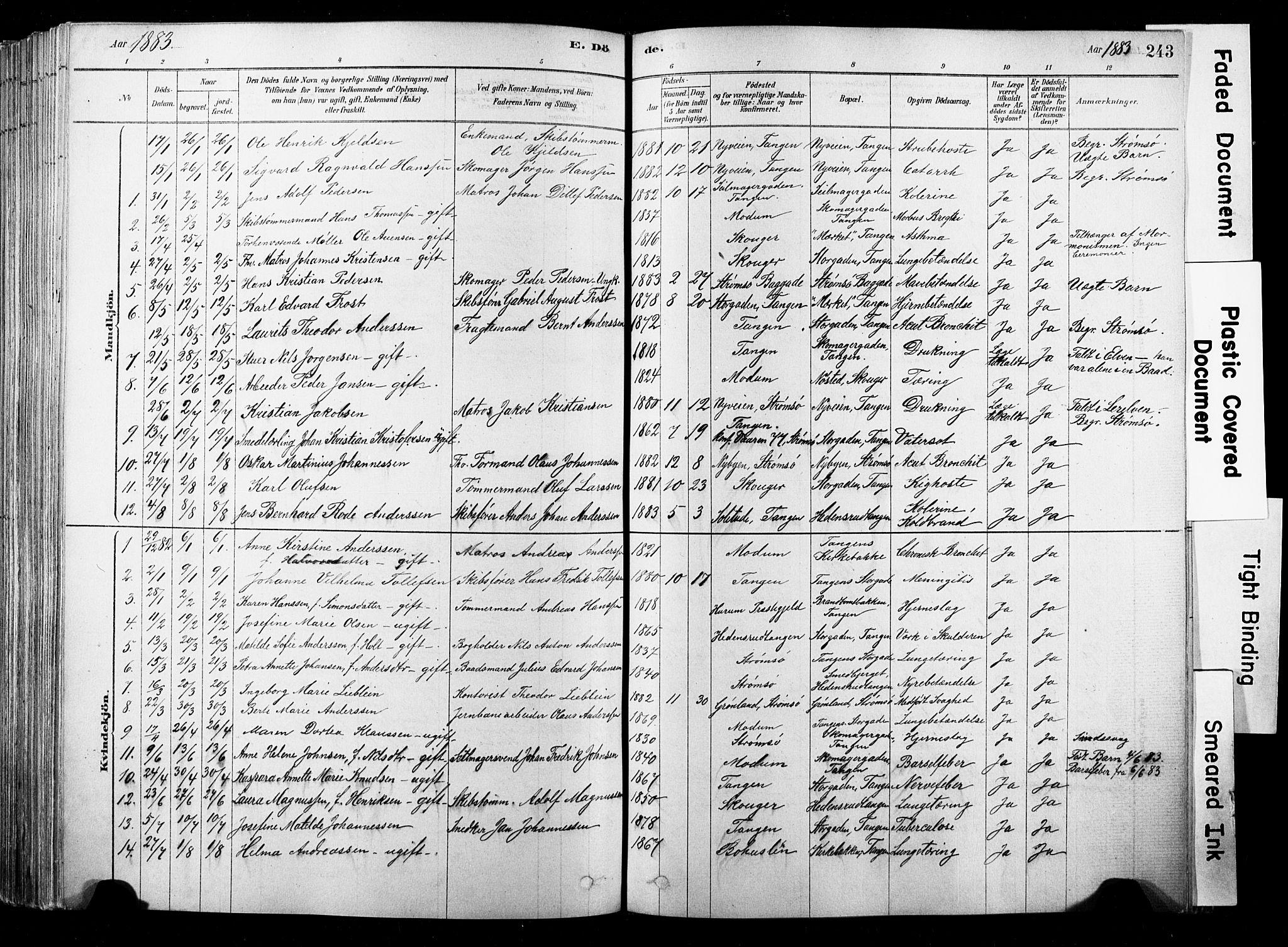 SAKO, Strømsø kirkebøker, F/Fb/L0006: Ministerialbok nr. II 6, 1879-1910, s. 243