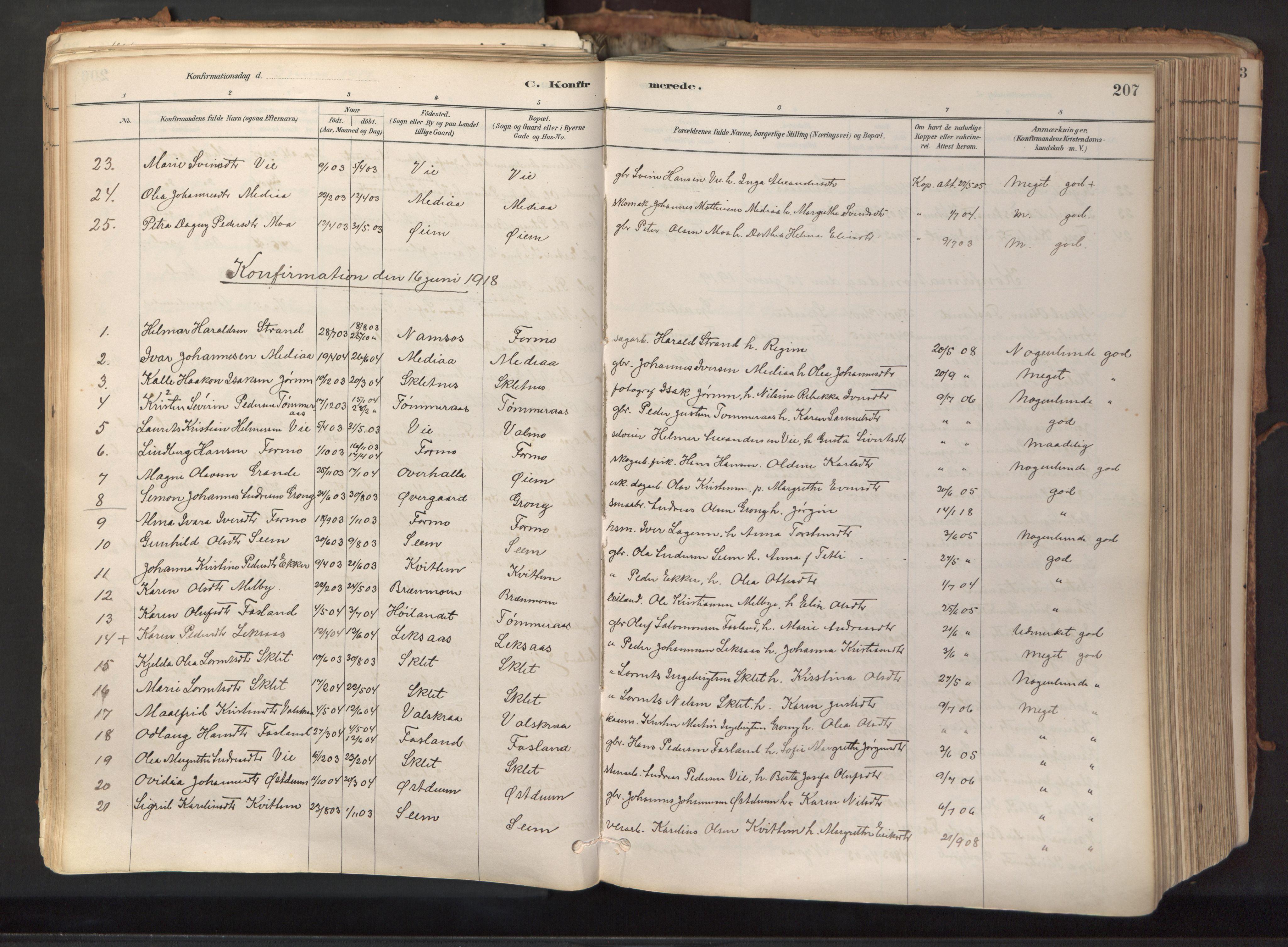 SAT, Ministerialprotokoller, klokkerbøker og fødselsregistre - Nord-Trøndelag, 758/L0519: Ministerialbok nr. 758A04, 1880-1926, s. 207