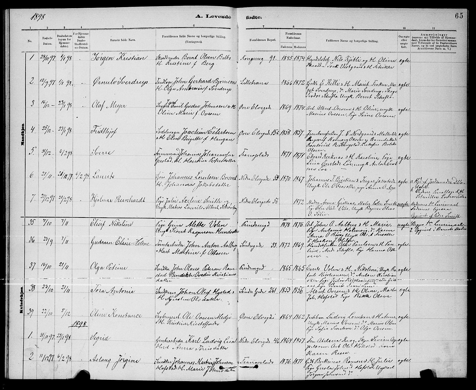 SAT, Ministerialprotokoller, klokkerbøker og fødselsregistre - Nord-Trøndelag, 739/L0374: Klokkerbok nr. 739C02, 1883-1898, s. 65