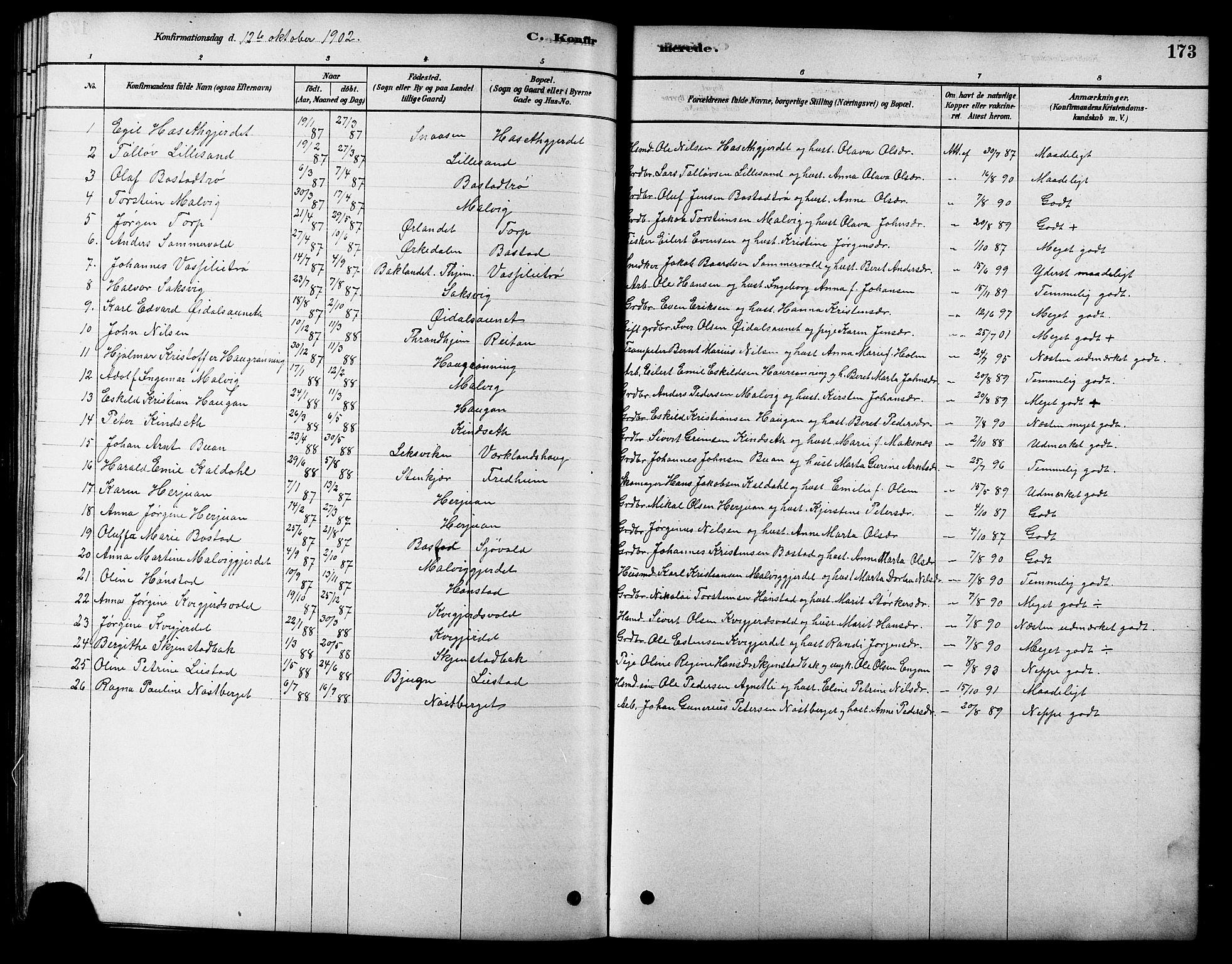 SAT, Ministerialprotokoller, klokkerbøker og fødselsregistre - Sør-Trøndelag, 616/L0423: Klokkerbok nr. 616C06, 1878-1903, s. 173