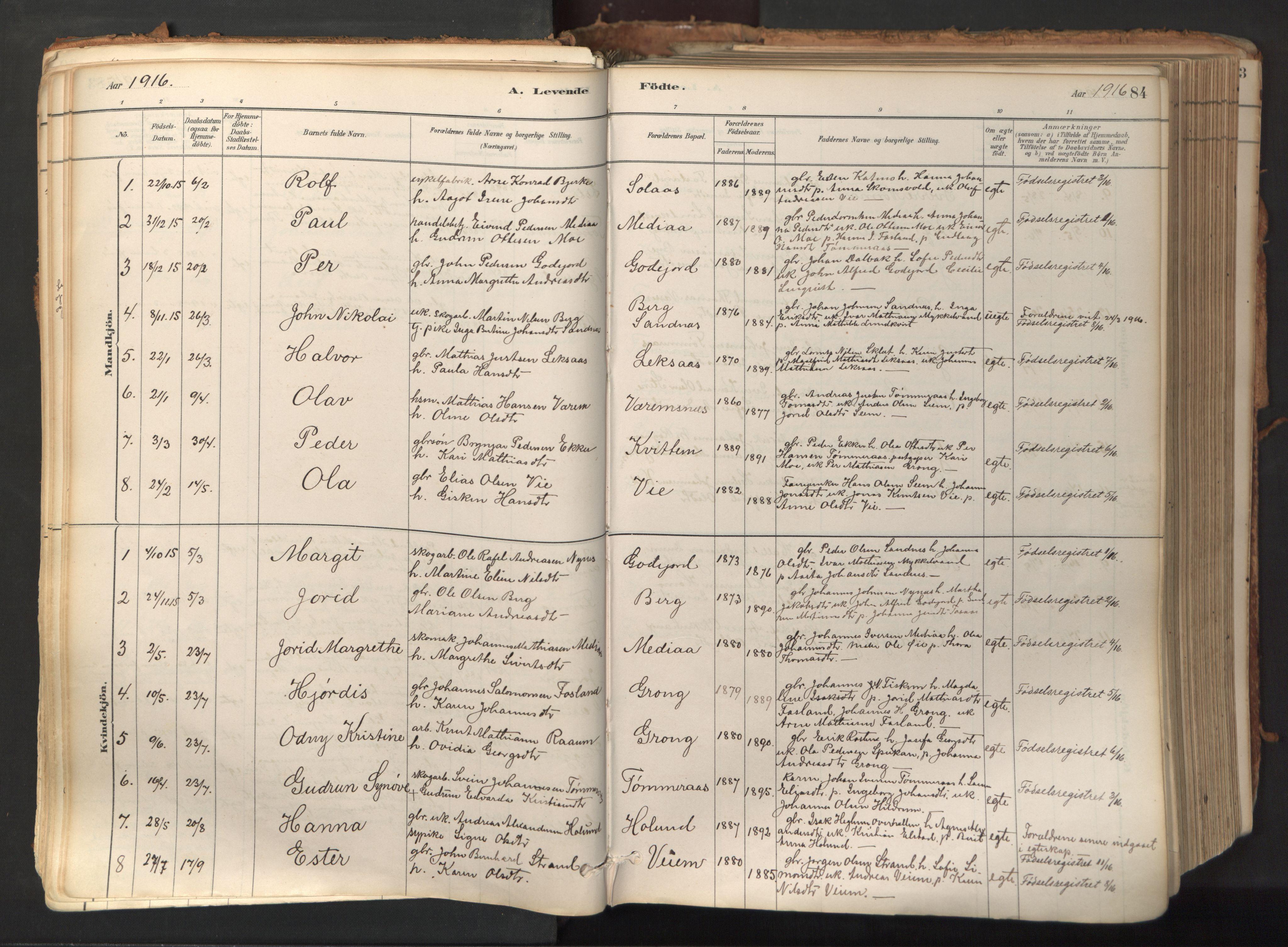 SAT, Ministerialprotokoller, klokkerbøker og fødselsregistre - Nord-Trøndelag, 758/L0519: Ministerialbok nr. 758A04, 1880-1926, s. 84