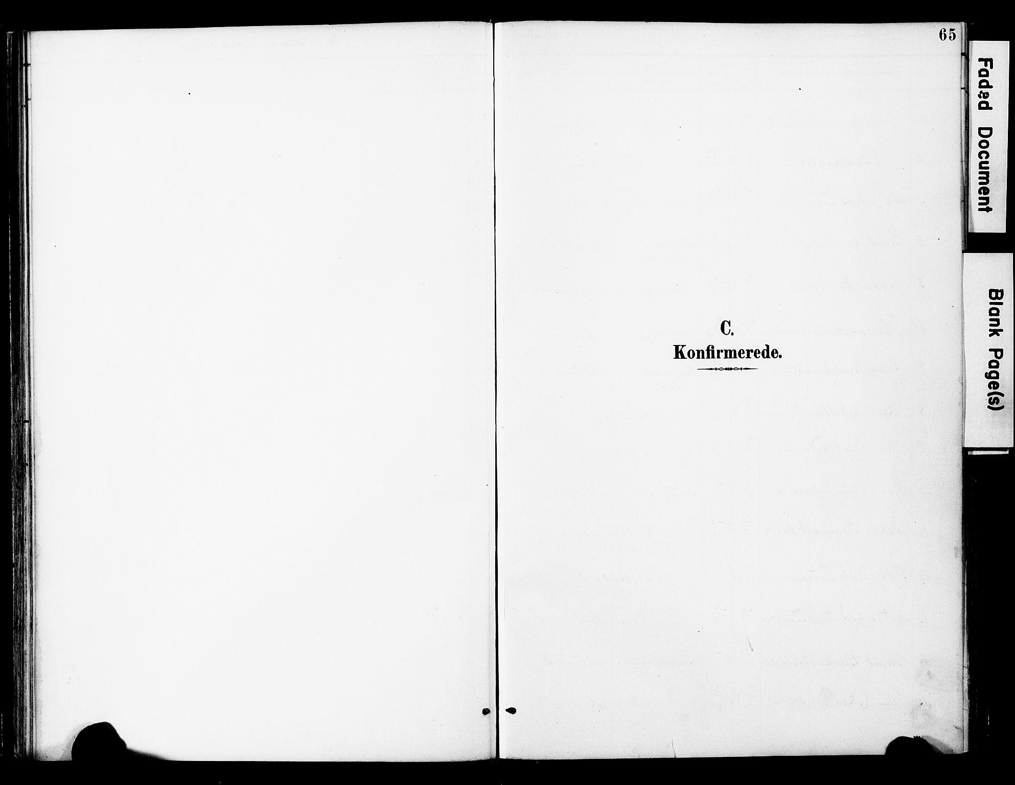 SAT, Ministerialprotokoller, klokkerbøker og fødselsregistre - Nord-Trøndelag, 742/L0409: Ministerialbok nr. 742A02, 1891-1905, s. 65