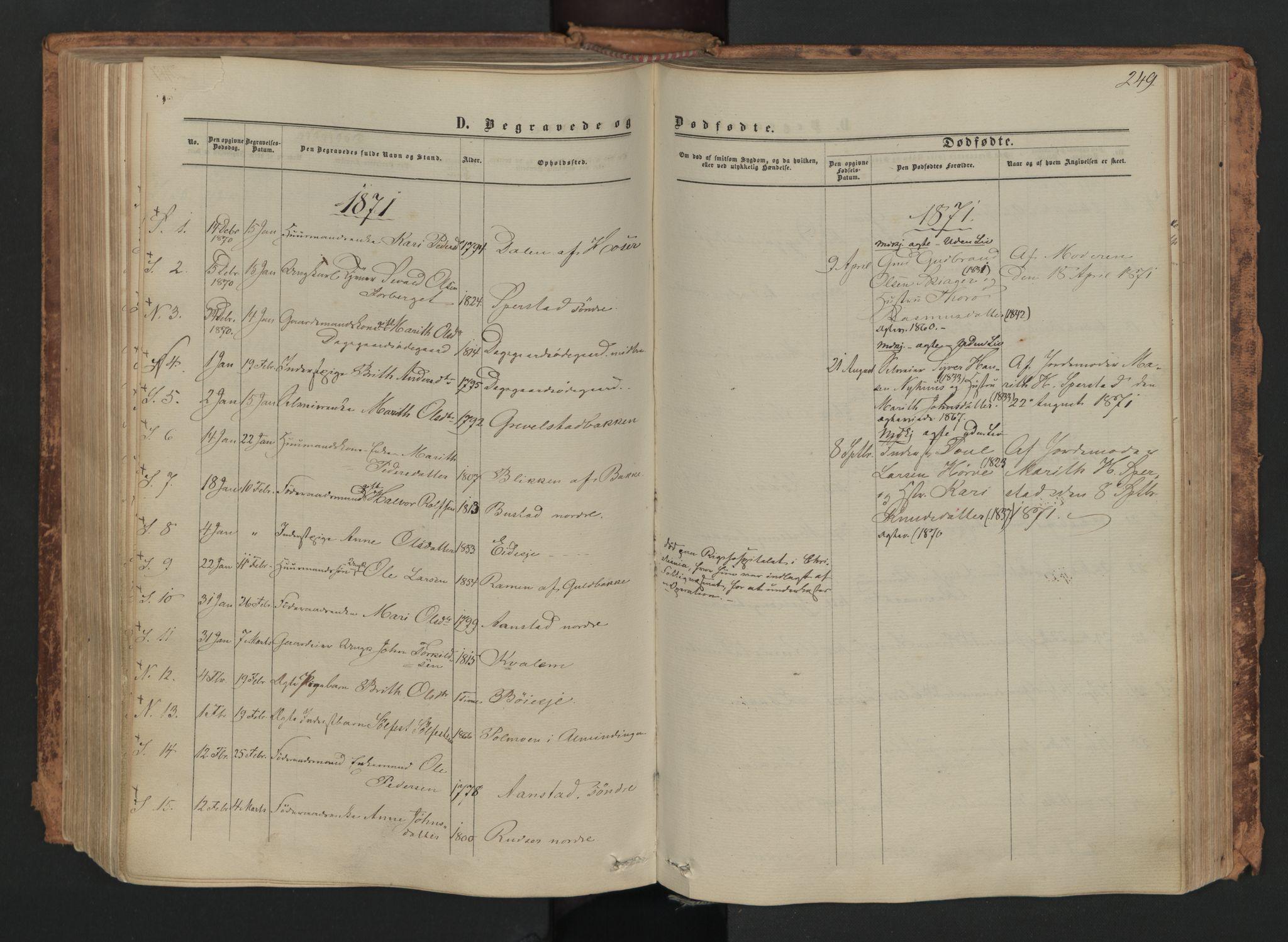 SAH, Skjåk prestekontor, Ministerialbok nr. 1, 1863-1879, s. 249b