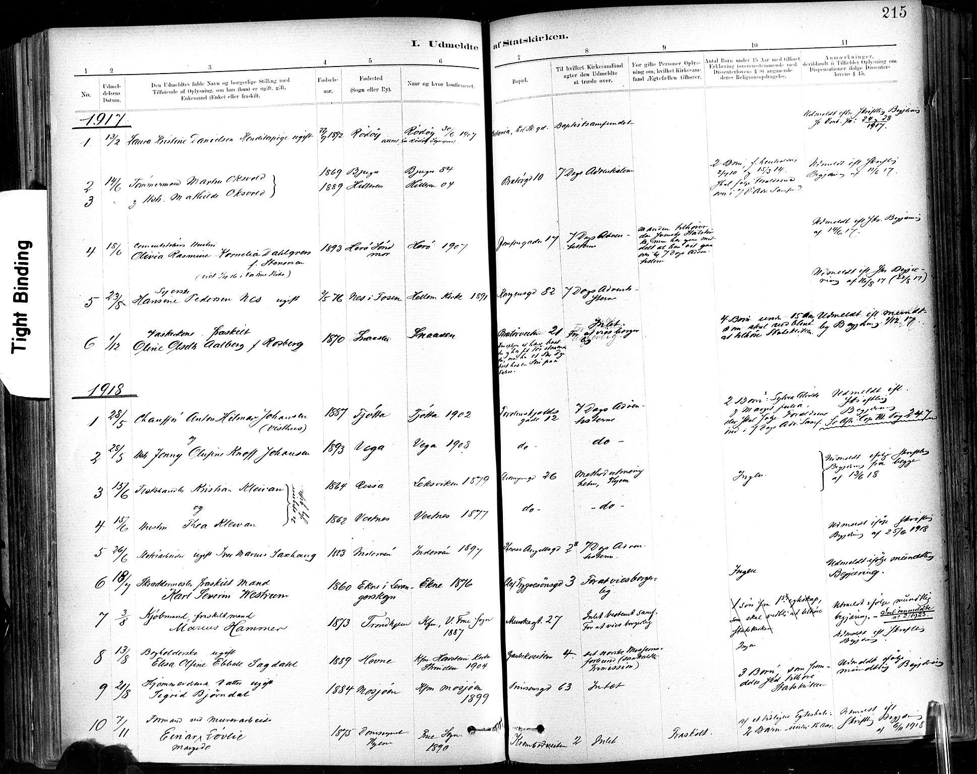 SAT, Ministerialprotokoller, klokkerbøker og fødselsregistre - Sør-Trøndelag, 602/L0120: Ministerialbok nr. 602A18, 1880-1913, s. 215