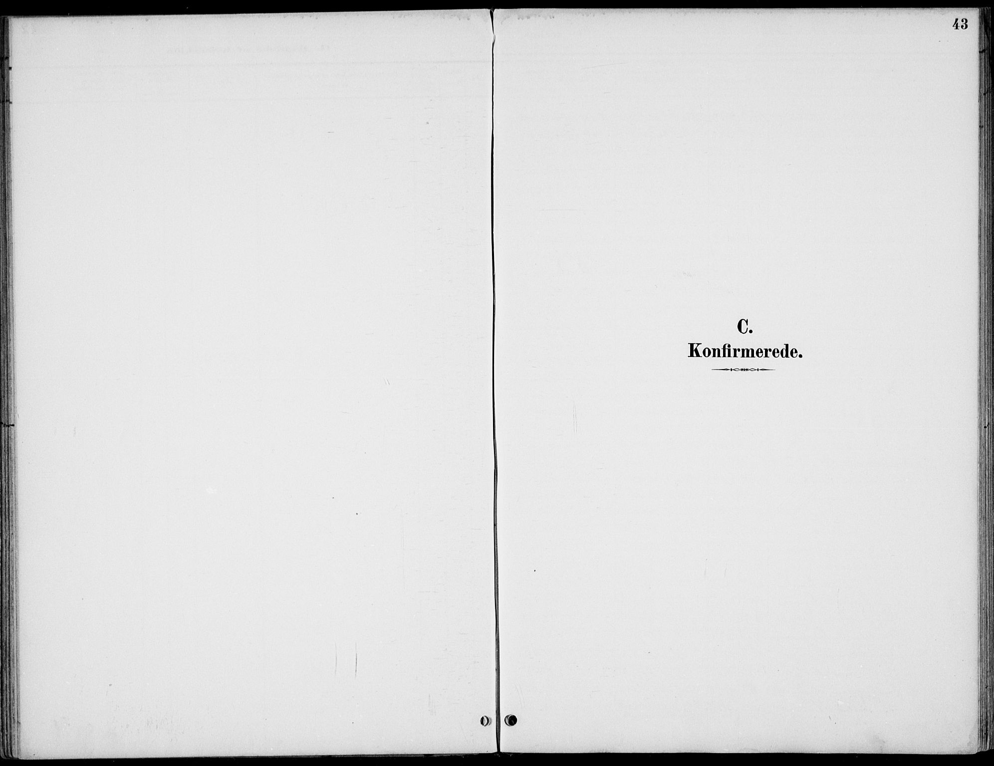 SAH, Østre Gausdal prestekontor, Ministerialbok nr. 3, 1887-1901, s. 43