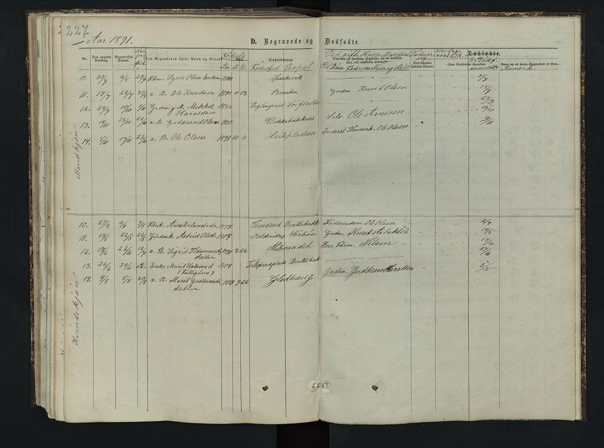 SAH, Sør-Aurdal prestekontor, Klokkerbok nr. 5, 1866-1893, s. 227