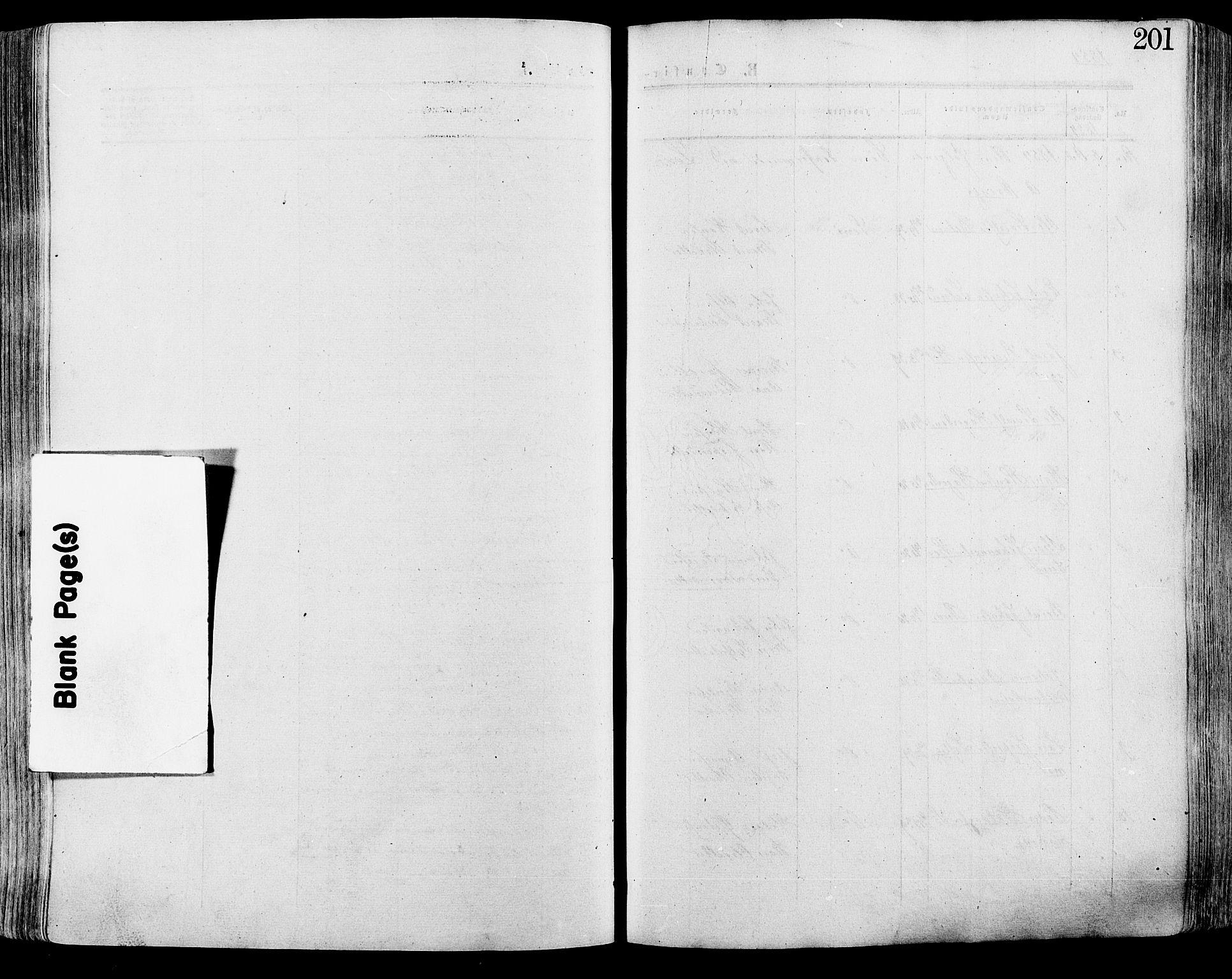 SAH, Lesja prestekontor, Ministerialbok nr. 8, 1854-1880, s. 201