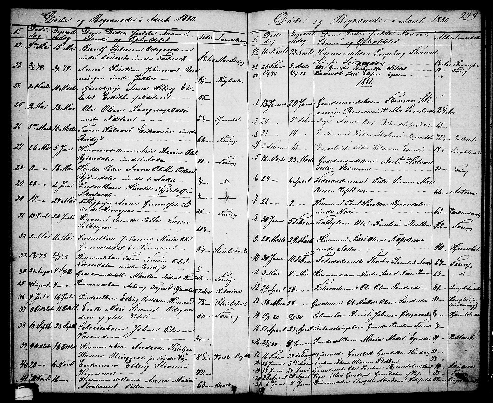 SAKO, Drangedal kirkebøker, G/Ga/L0002: Klokkerbok nr. I 2, 1856-1887, s. 249