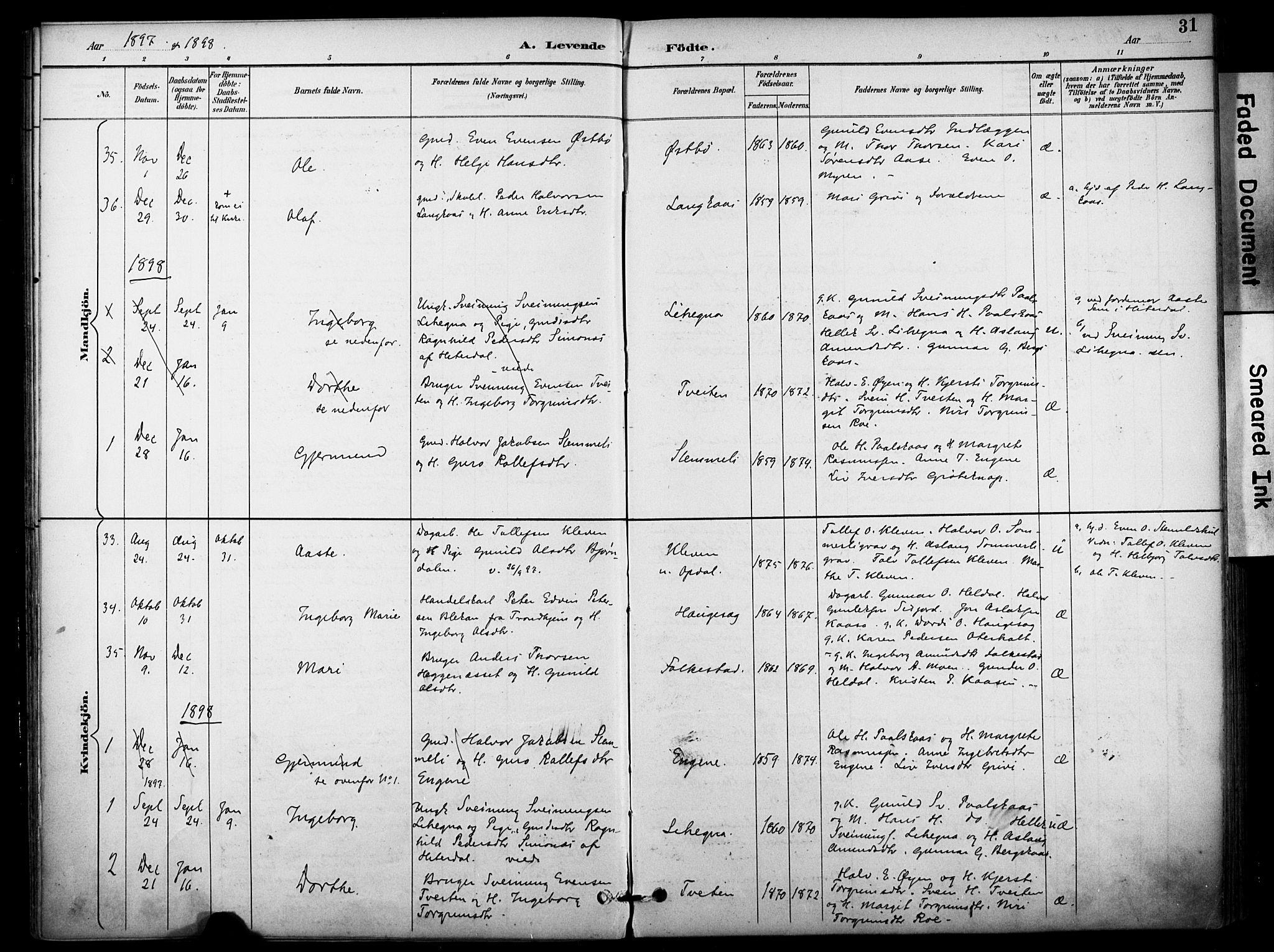 SAKO, Bø kirkebøker, F/Fa/L0011: Ministerialbok nr. 11, 1892-1900, s. 31