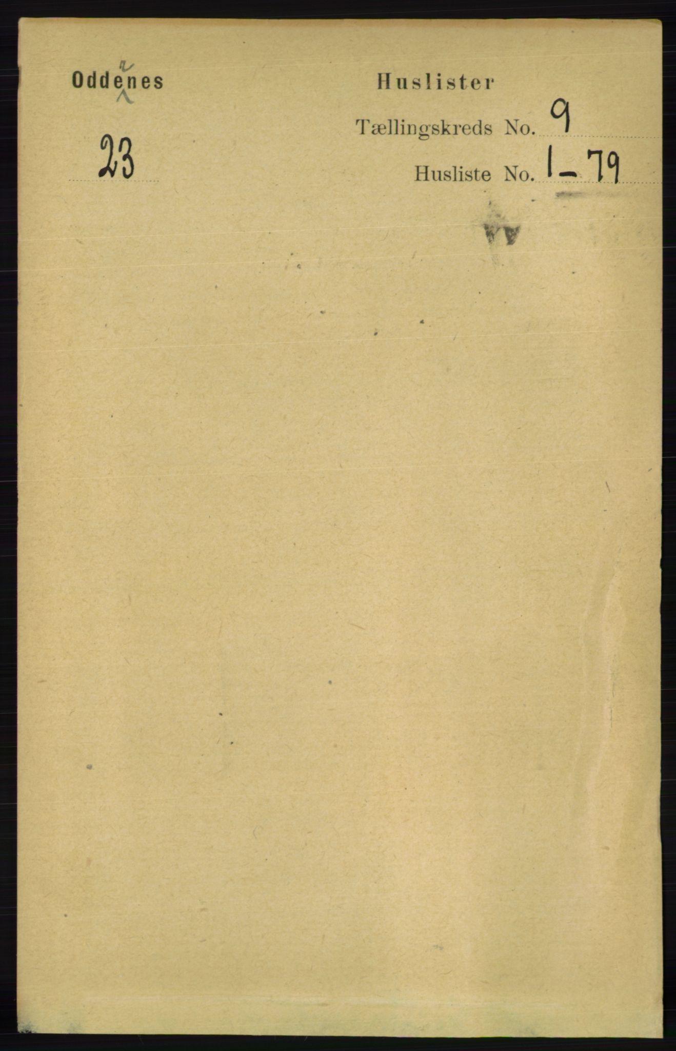 RA, Folketelling 1891 for 1012 Oddernes herred, 1891, s. 3179