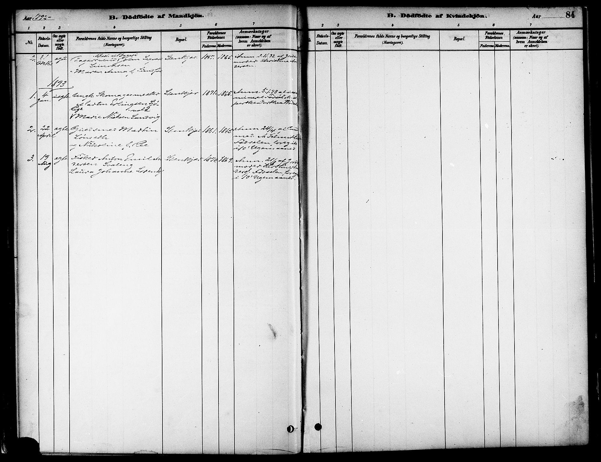 SAT, Ministerialprotokoller, klokkerbøker og fødselsregistre - Nord-Trøndelag, 739/L0371: Ministerialbok nr. 739A03, 1881-1895, s. 84