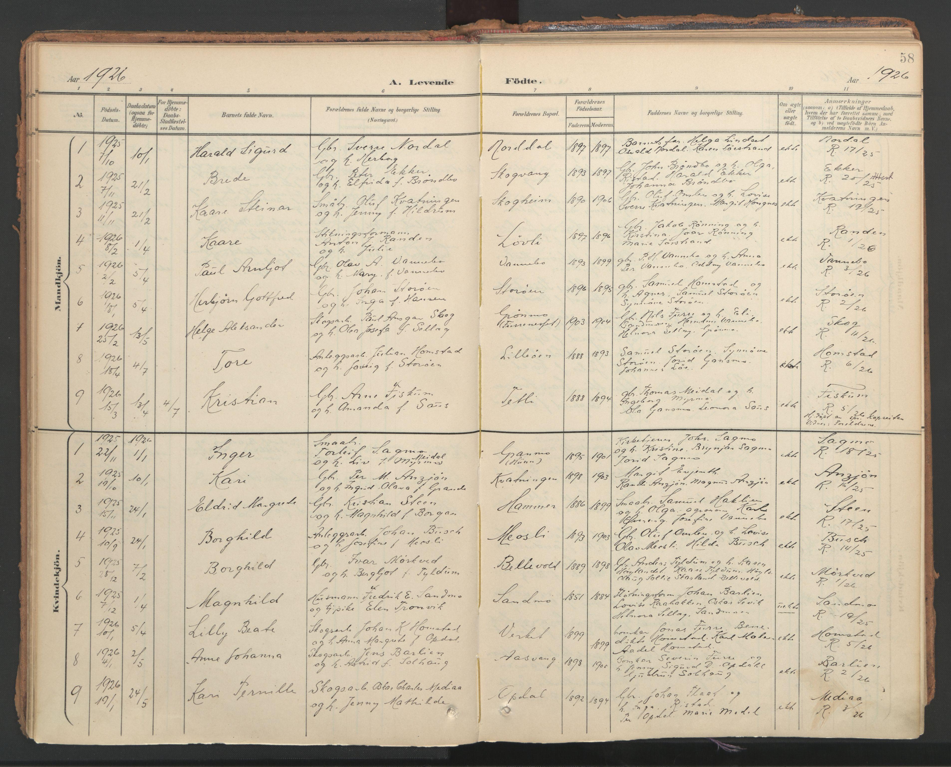 SAT, Ministerialprotokoller, klokkerbøker og fødselsregistre - Nord-Trøndelag, 766/L0564: Ministerialbok nr. 767A02, 1900-1932, s. 58