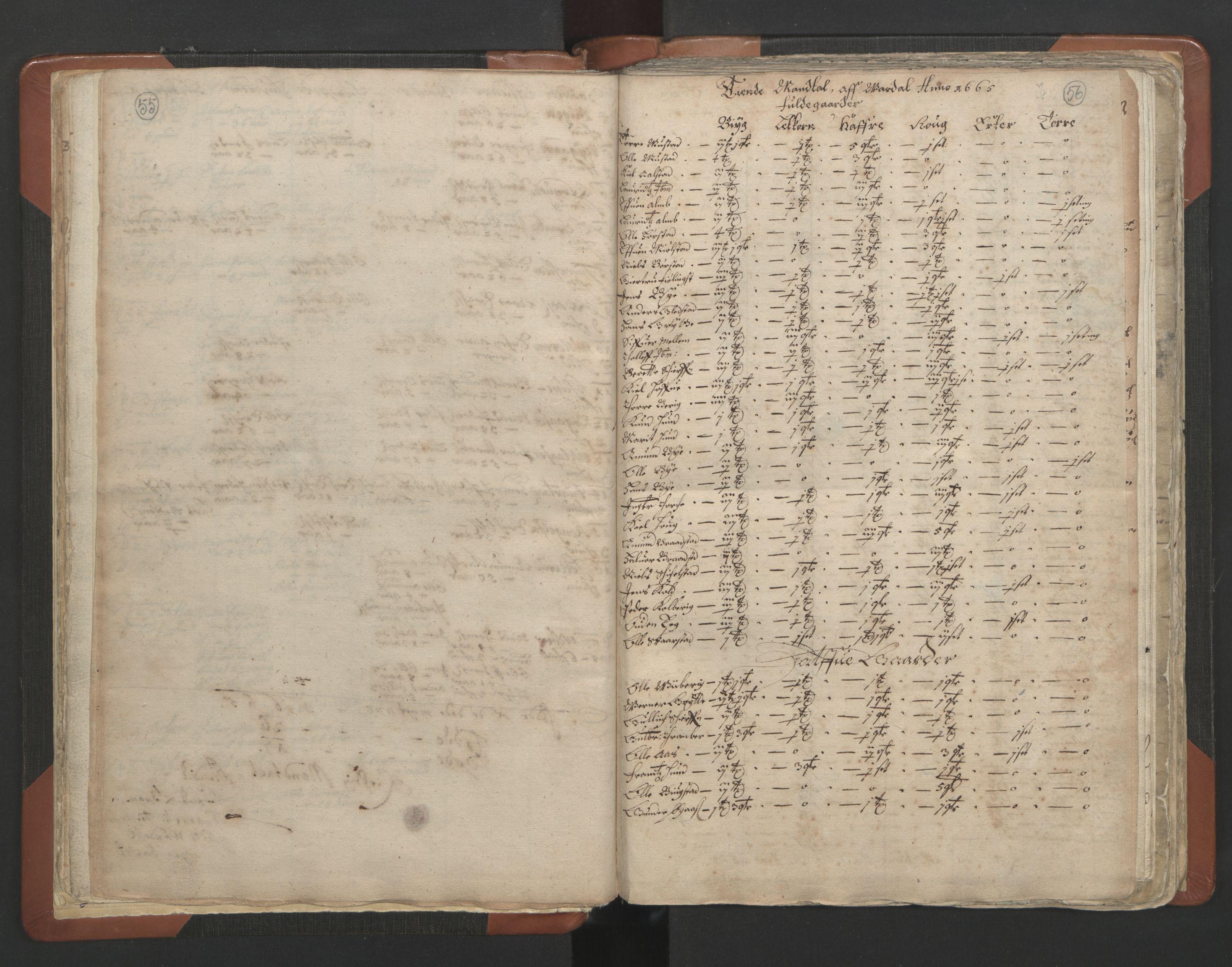 RA, Sogneprestenes manntall 1664-1666, nr. 7: Hadeland prosti, 1664-1666, s. 55-56