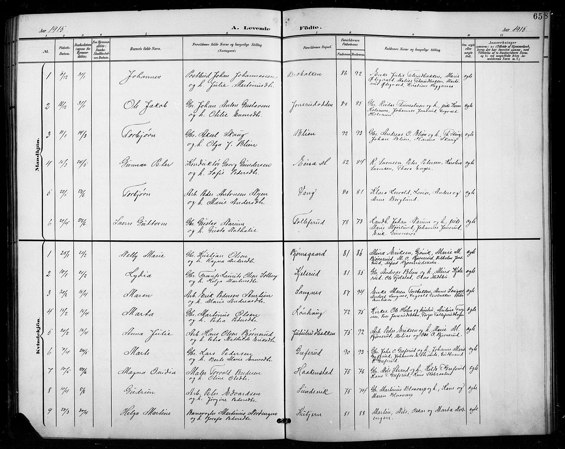 SAH, Vestre Toten prestekontor, Klokkerbok nr. 16, 1901-1915, s. 65
