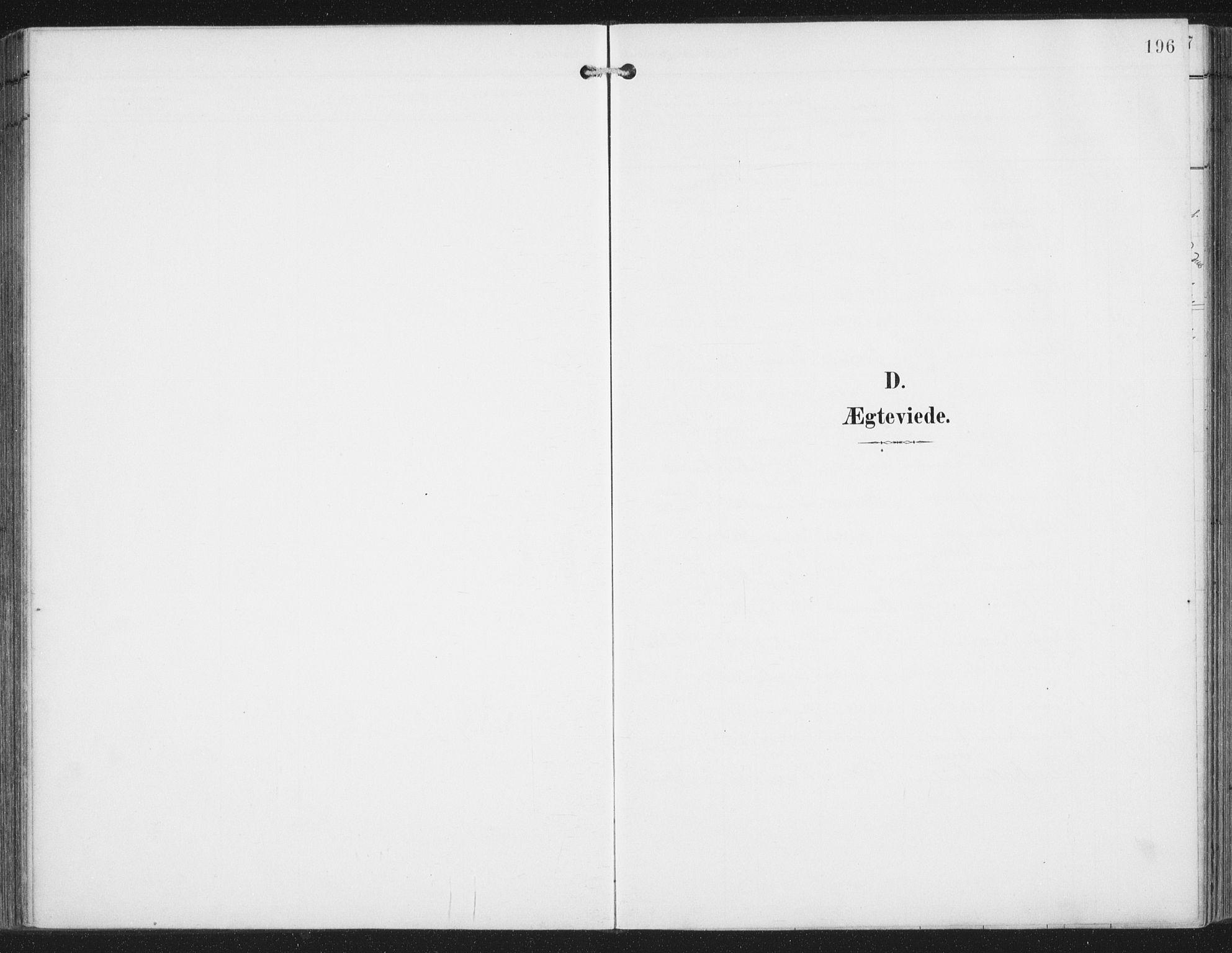 SAT, Ministerialprotokoller, klokkerbøker og fødselsregistre - Nordland, 876/L1098: Ministerialbok nr. 876A04, 1896-1915, s. 196