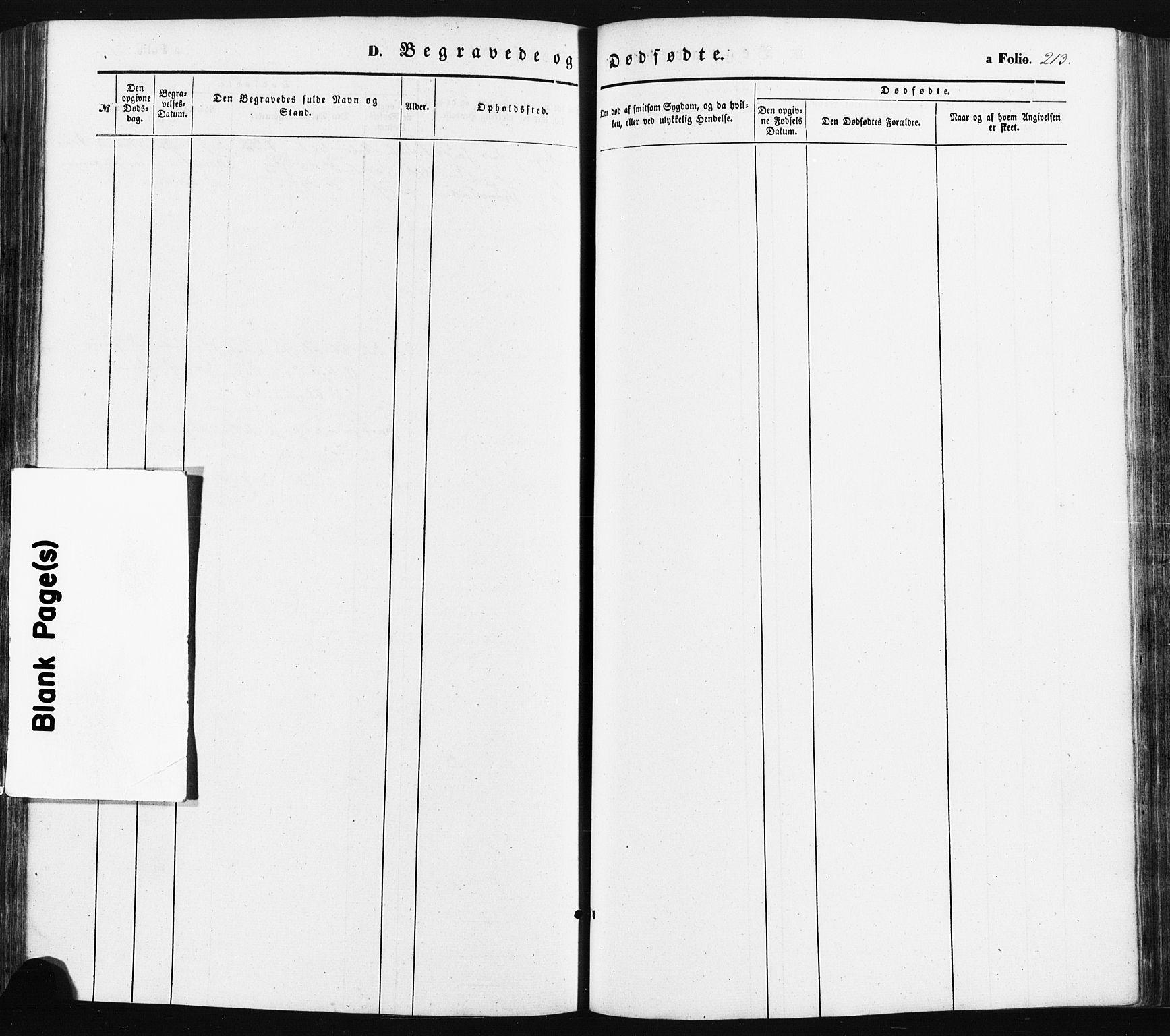 SAK, Oddernes sokneprestkontor, F/Fa/Faa/L0007: Ministerialbok nr. A 7, 1851-1863, s. 213