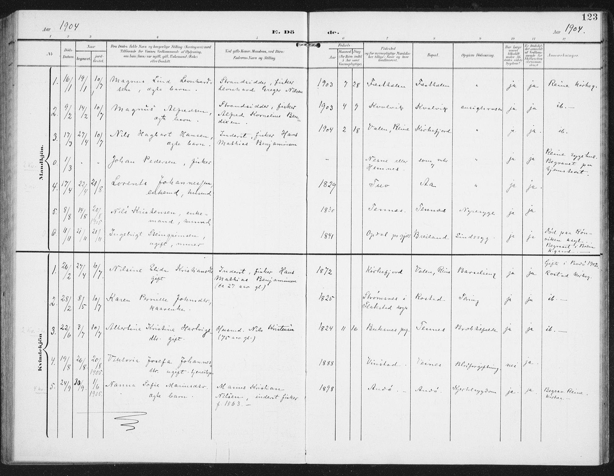 SAT, Ministerialprotokoller, klokkerbøker og fødselsregistre - Nordland, 886/L1221: Ministerialbok nr. 886A03, 1903-1913, s. 123