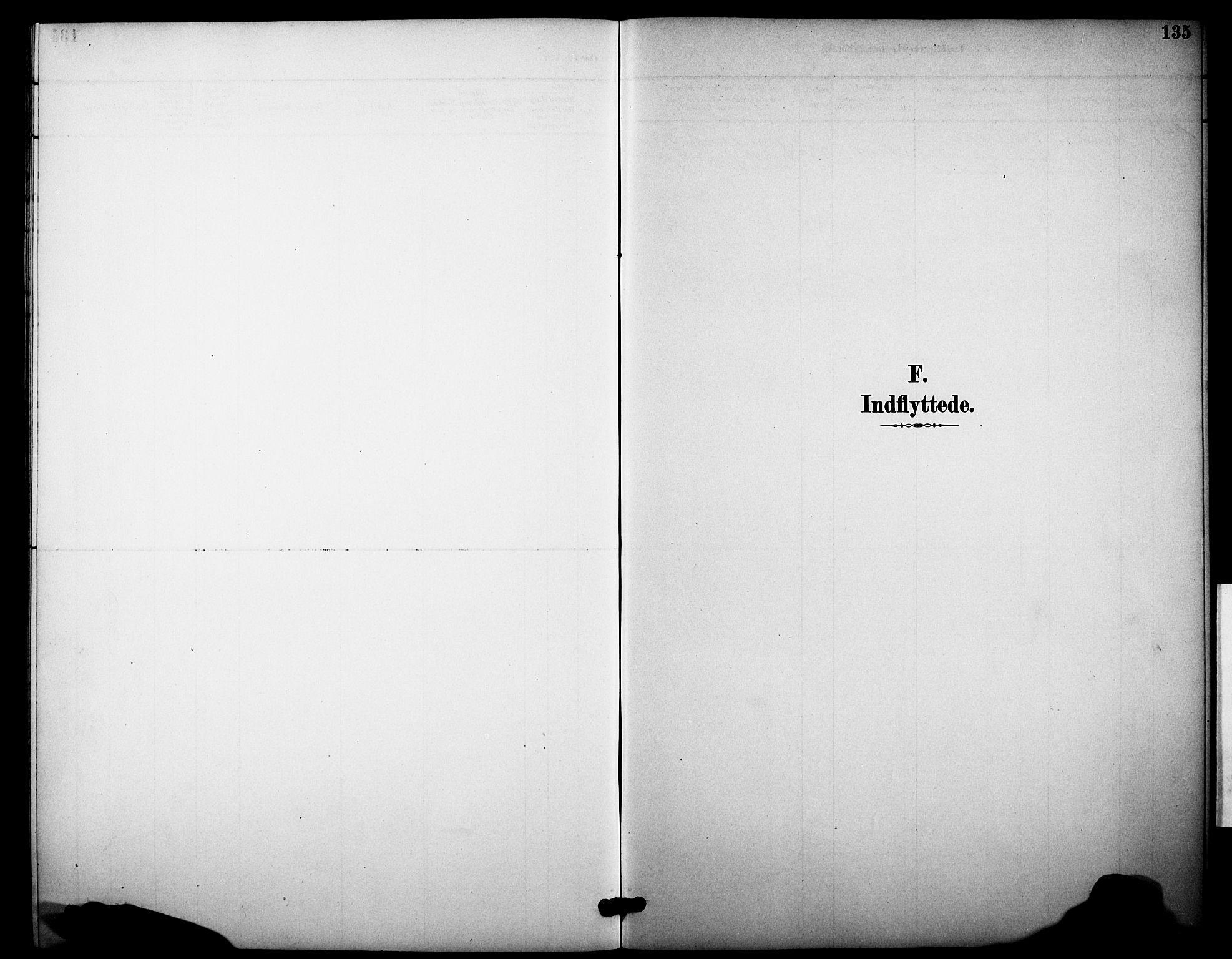 SAKO, Heddal kirkebøker, F/Fb/L0001: Ministerialbok nr. II 1, 1884-1910, s. 135