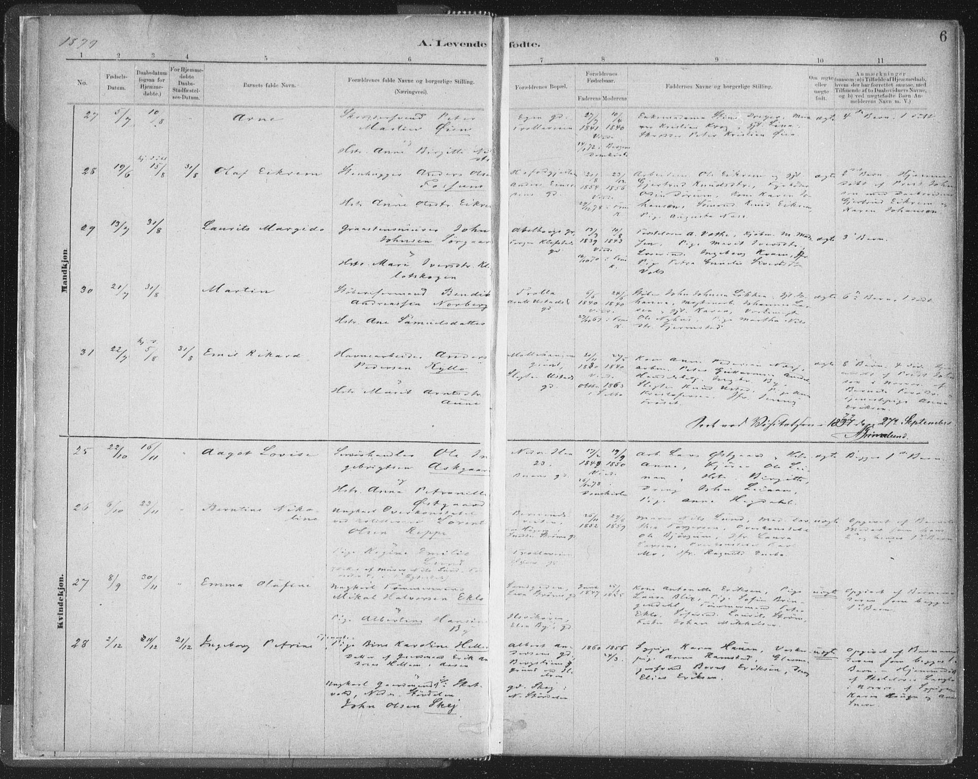 SAT, Ministerialprotokoller, klokkerbøker og fødselsregistre - Sør-Trøndelag, 603/L0162: Ministerialbok nr. 603A01, 1879-1895, s. 6