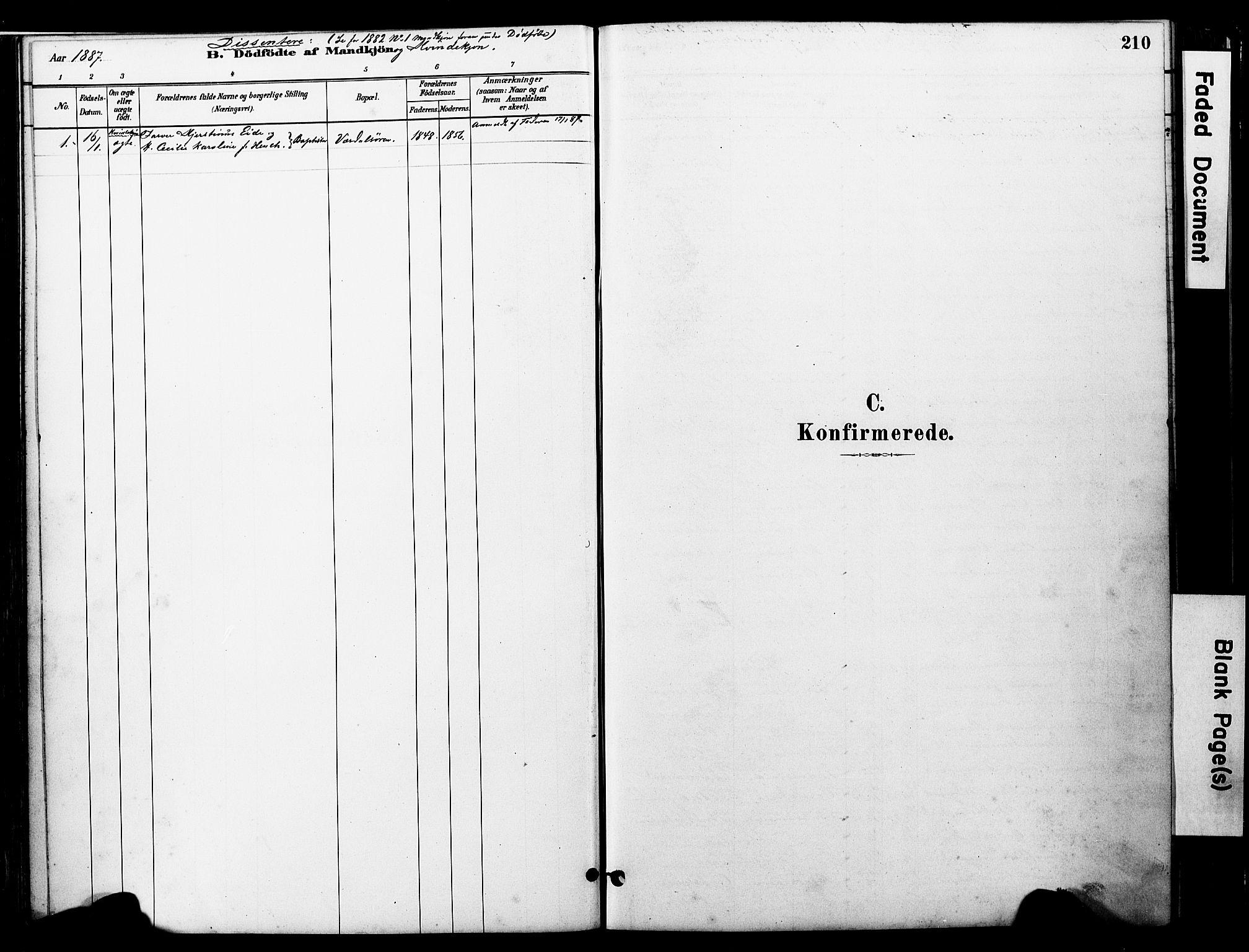 SAT, Ministerialprotokoller, klokkerbøker og fødselsregistre - Nord-Trøndelag, 723/L0244: Ministerialbok nr. 723A13, 1881-1899, s. 210