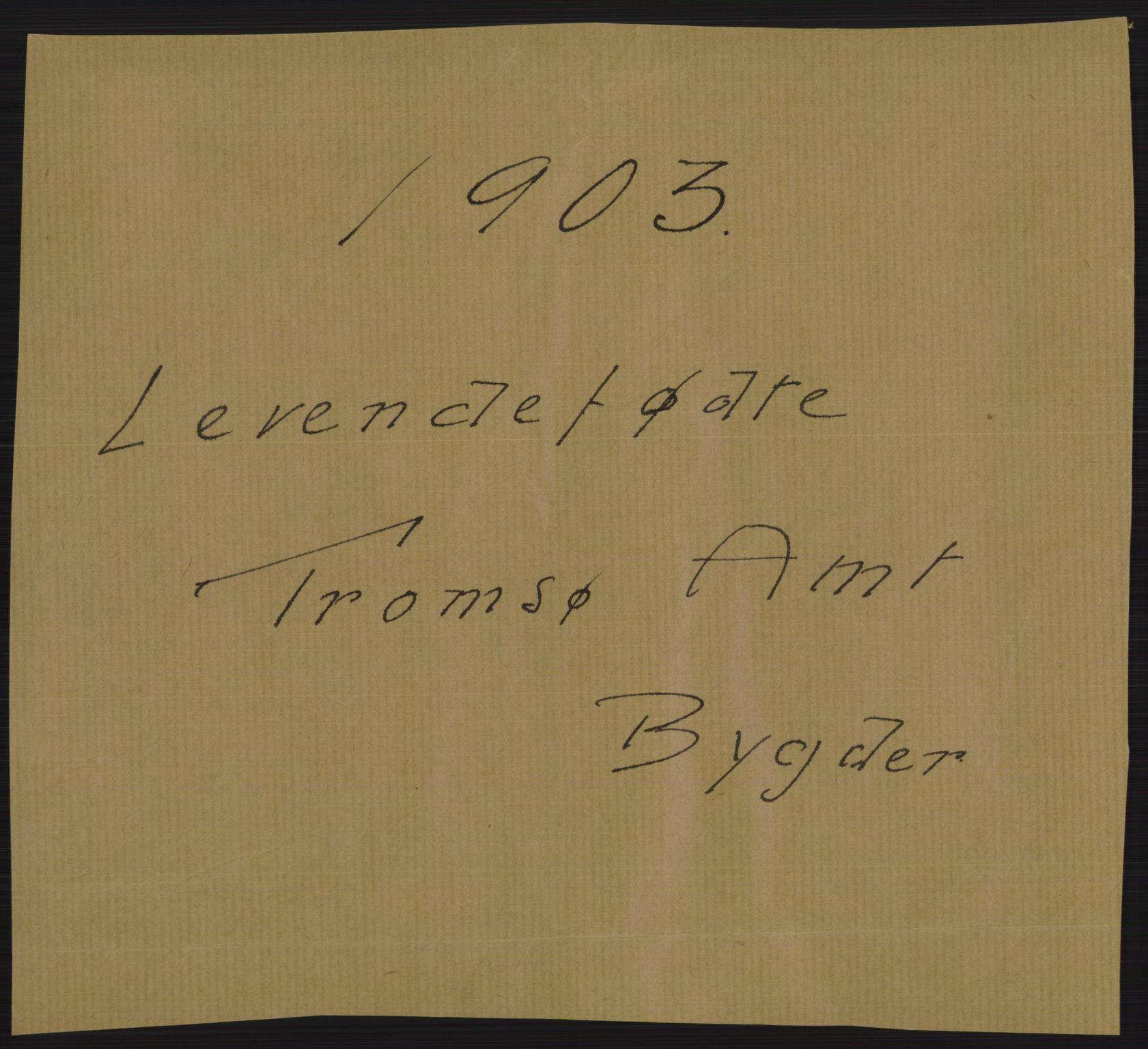 RA, Statistisk sentralbyrå, Sosiodemografiske emner, Befolkning, D/Df/Dfa/Dfaa/L0021: Tromsø amt: Fødte, gifte, døde., 1903