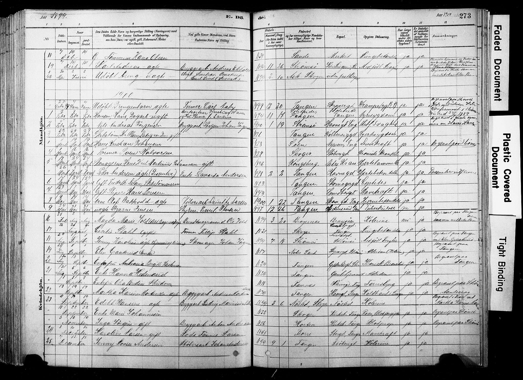 SAKO, Strømsø kirkebøker, F/Fb/L0006: Ministerialbok nr. II 6, 1879-1910, s. 273