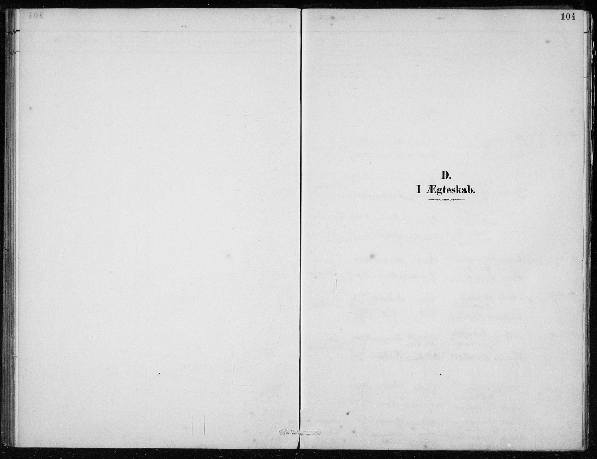 SAB, Lindås Sokneprestembete, H/Haa: Ministerialbok nr. F  1, 1886-1897, s. 104