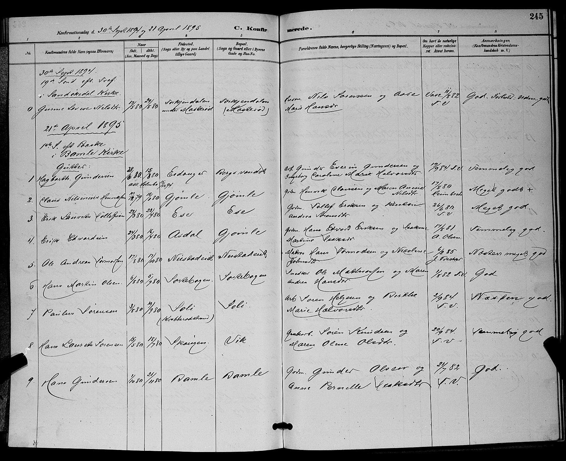 SAKO, Bamble kirkebøker, G/Ga/L0009: Klokkerbok nr. I 9, 1888-1900, s. 245