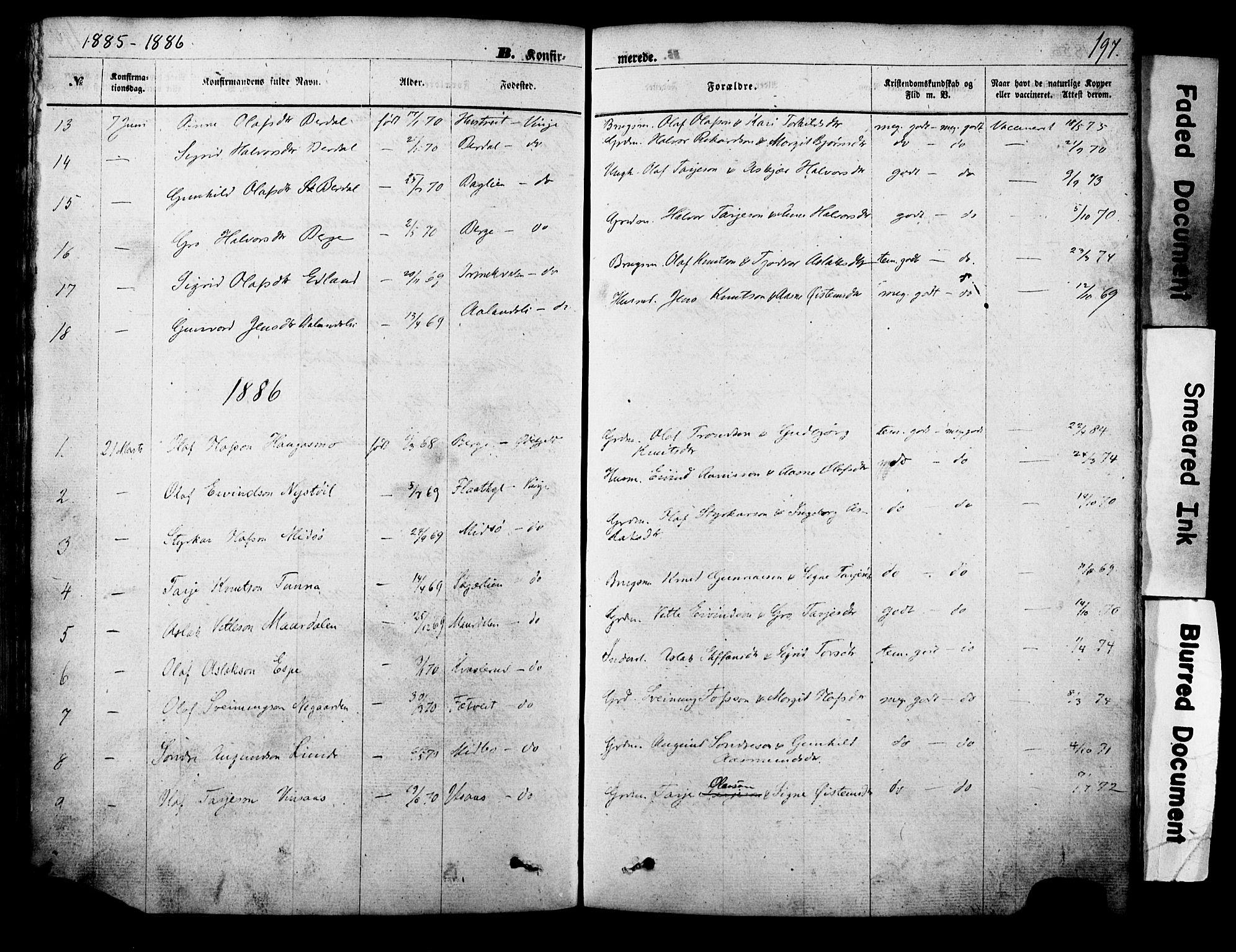 SAKO, Vinje kirkebøker, F/Fa/L0005: Ministerialbok nr. I 5, 1870-1886, s. 197