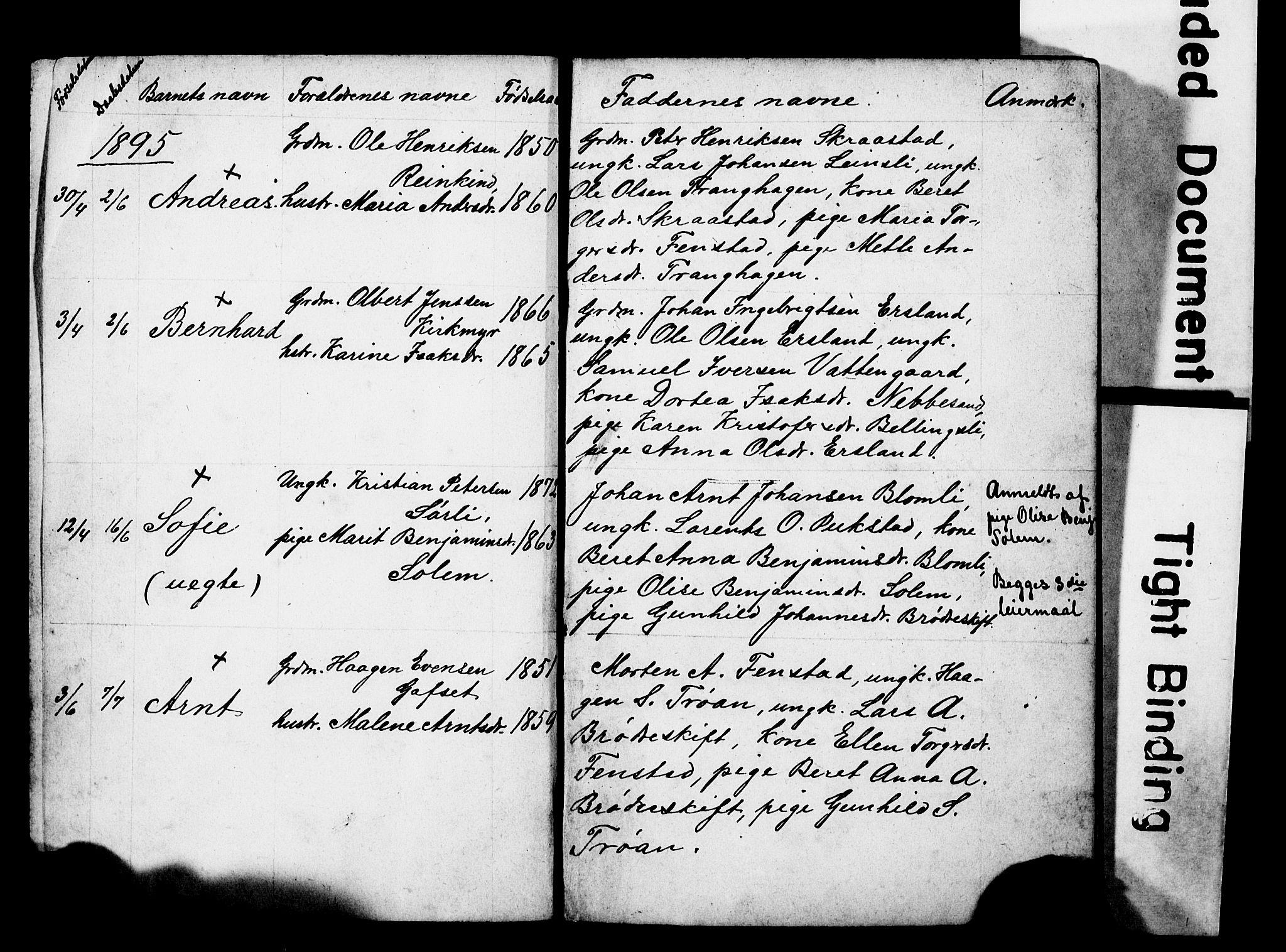 SAT, Ministerialprotokoller, klokkerbøker og fødselsregistre - Sør-Trøndelag, 646/L0630: Klokkerbok nr. 646C03, 1895-1905