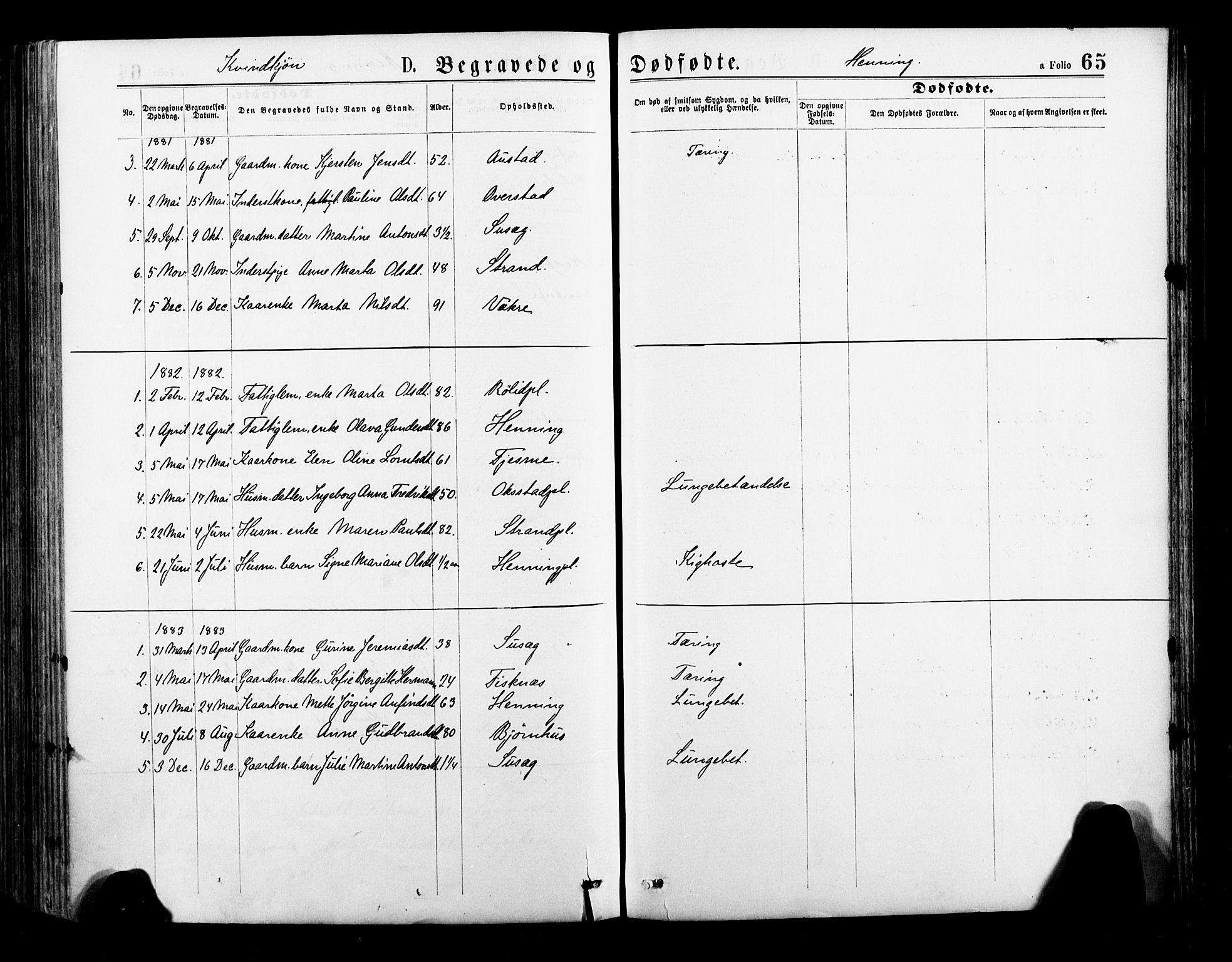 SAT, Ministerialprotokoller, klokkerbøker og fødselsregistre - Nord-Trøndelag, 735/L0348: Ministerialbok nr. 735A09 /3, 1873-1883, s. 65