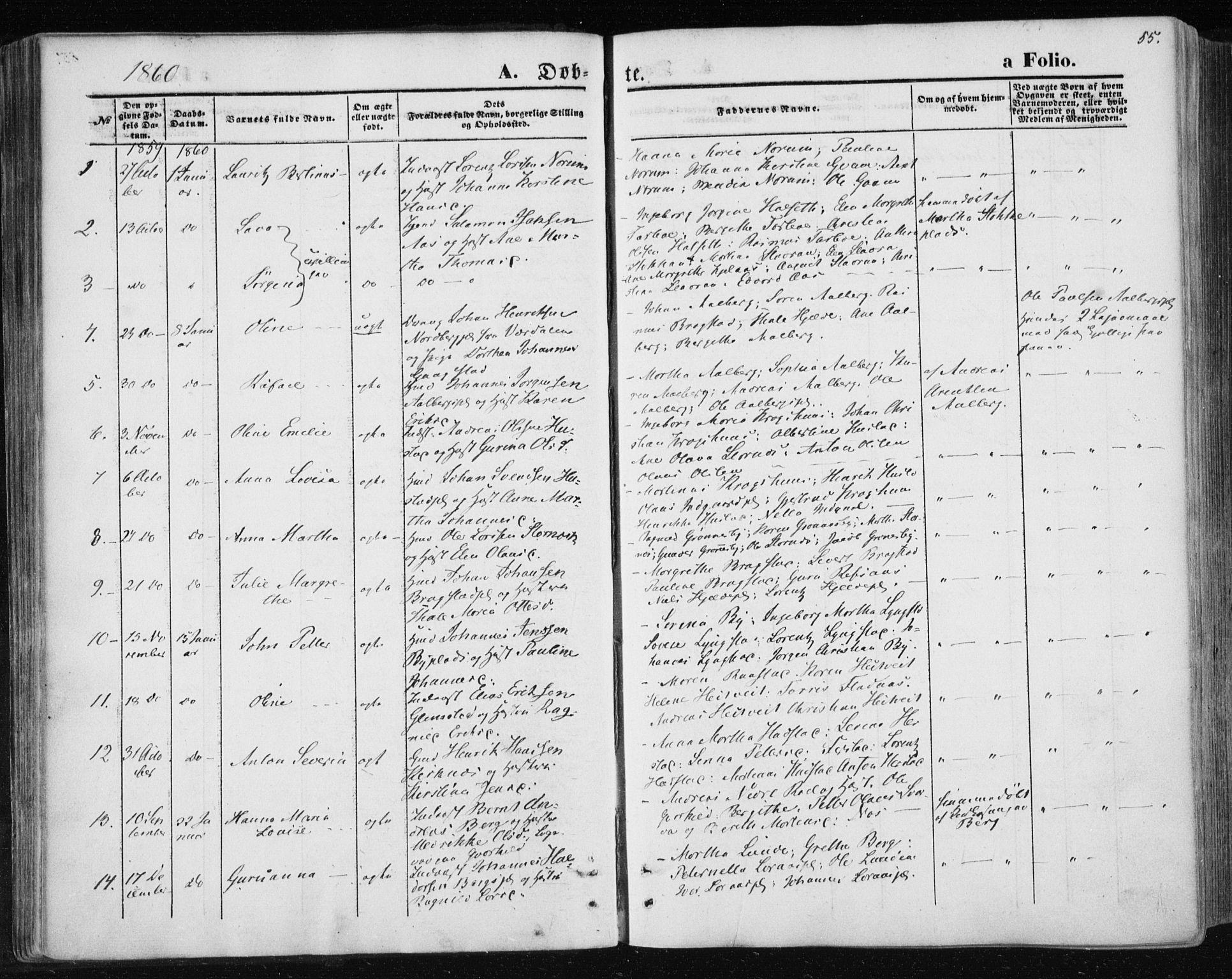 SAT, Ministerialprotokoller, klokkerbøker og fødselsregistre - Nord-Trøndelag, 730/L0283: Ministerialbok nr. 730A08, 1855-1865, s. 55