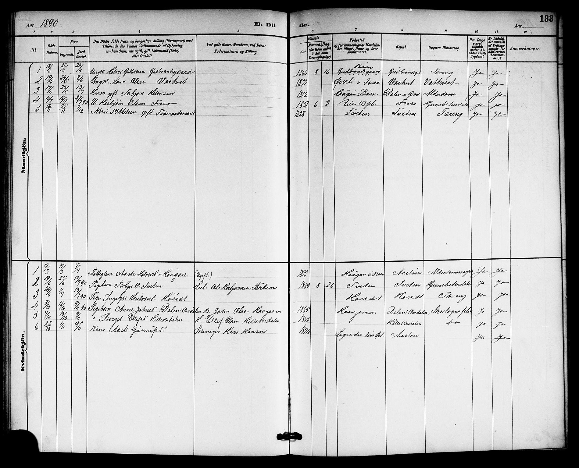 SAKO, Gransherad kirkebøker, G/Gb/L0003: Klokkerbok nr. II 3, 1887-1921, s. 133
