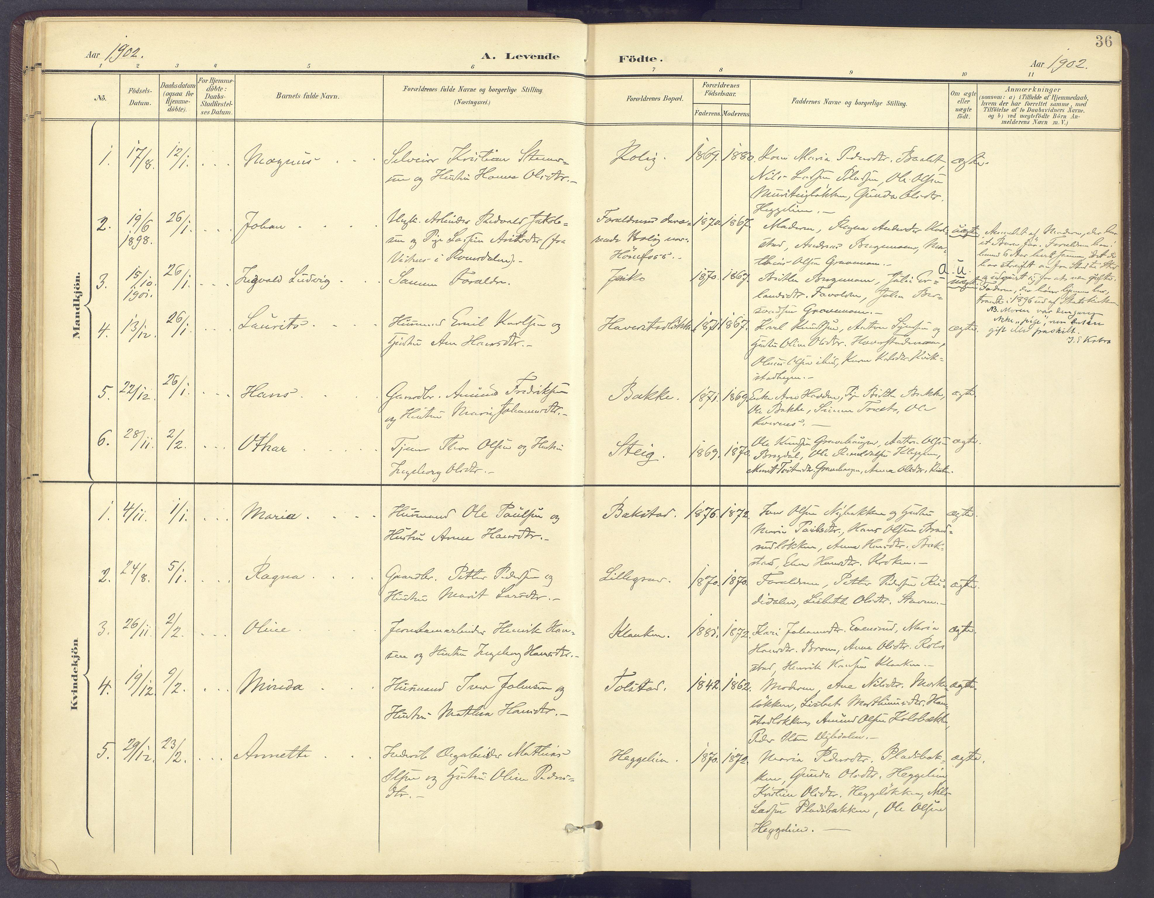SAH, Sør-Fron prestekontor, H/Ha/Haa/L0004: Ministerialbok nr. 4, 1898-1919, s. 36