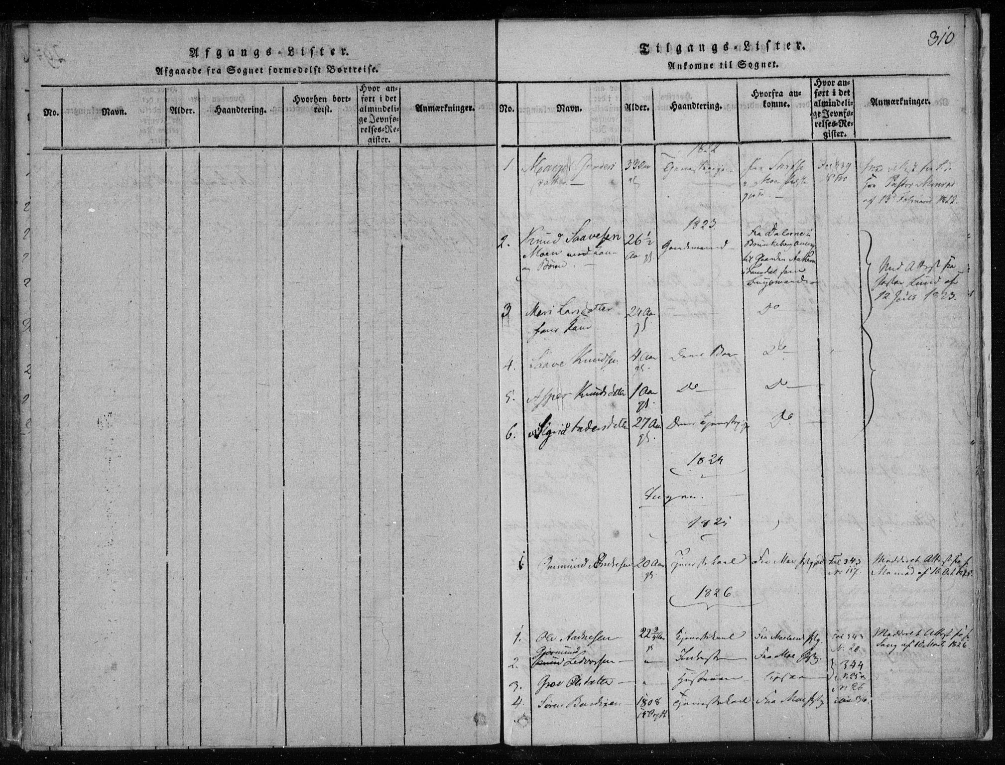 SAKO, Lårdal kirkebøker, F/Fa/L0005: Ministerialbok nr. I 5, 1815-1860, s. 310