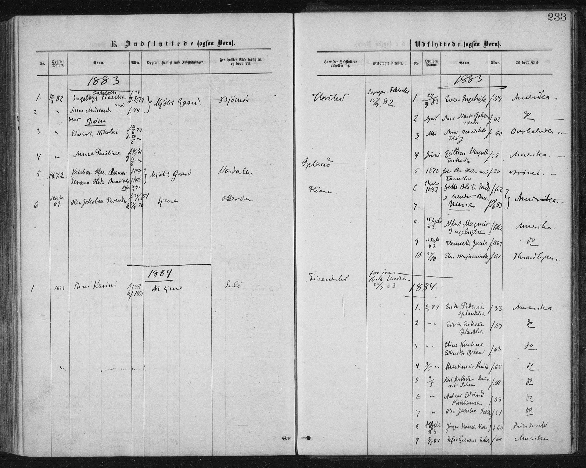 SAT, Ministerialprotokoller, klokkerbøker og fødselsregistre - Nord-Trøndelag, 771/L0596: Ministerialbok nr. 771A03, 1870-1884, s. 233