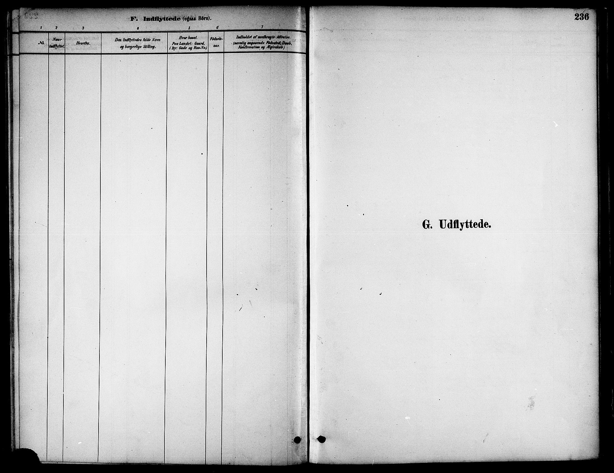 SAT, Ministerialprotokoller, klokkerbøker og fødselsregistre - Nord-Trøndelag, 739/L0371: Ministerialbok nr. 739A03, 1881-1895, s. 236