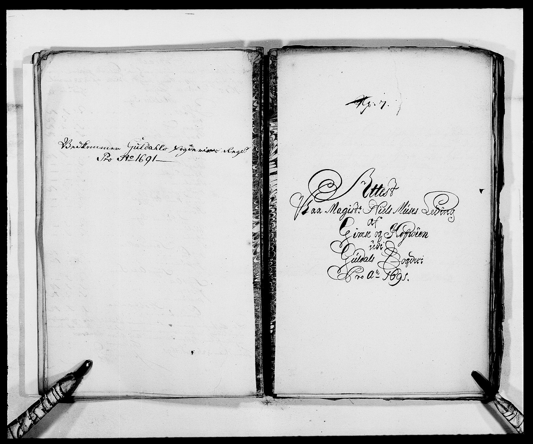 RA, Rentekammeret inntil 1814, Reviderte regnskaper, Fogderegnskap, R59/L3941: Fogderegnskap Gauldal, 1691, s. 195