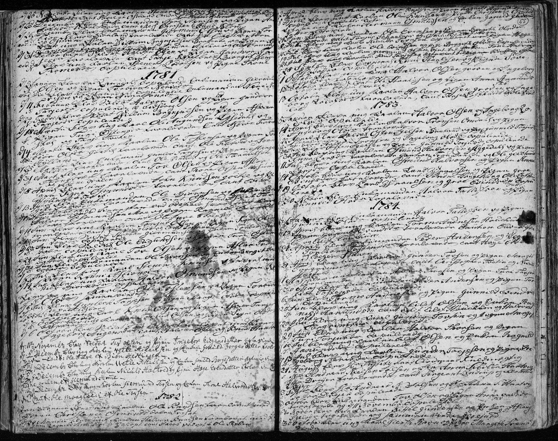 SAKO, Lårdal kirkebøker, F/Fa/L0003: Ministerialbok nr. I 3, 1754-1790, s. 55