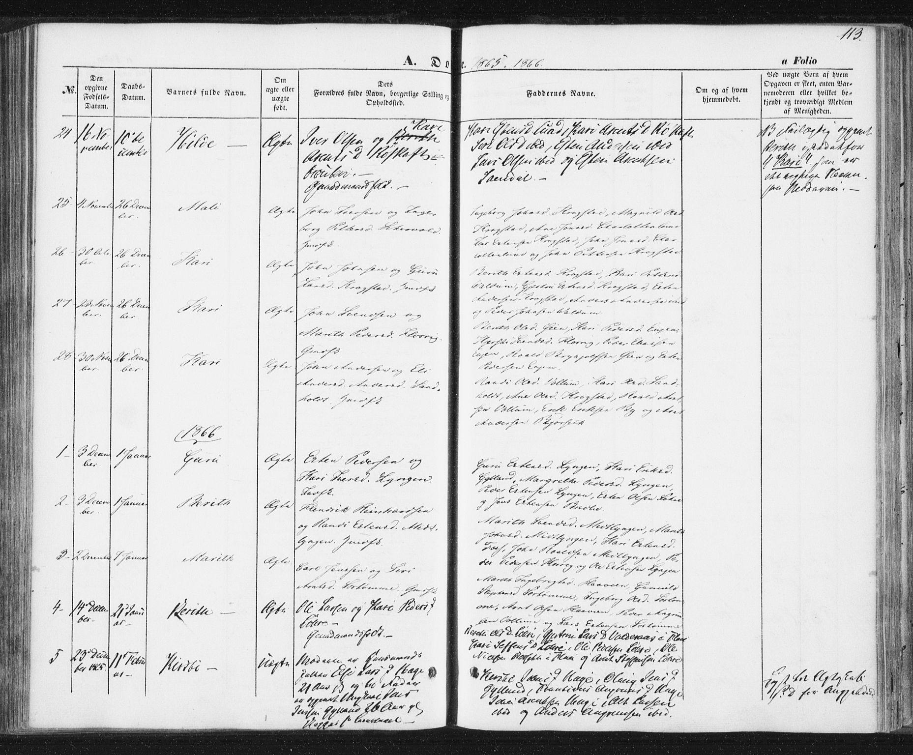 SAT, Ministerialprotokoller, klokkerbøker og fødselsregistre - Sør-Trøndelag, 692/L1103: Ministerialbok nr. 692A03, 1849-1870, s. 113