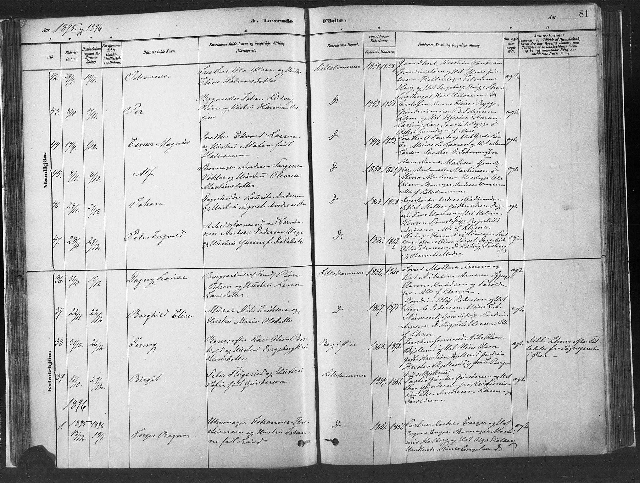 SAH, Fåberg prestekontor, Ministerialbok nr. 10, 1879-1900, s. 81