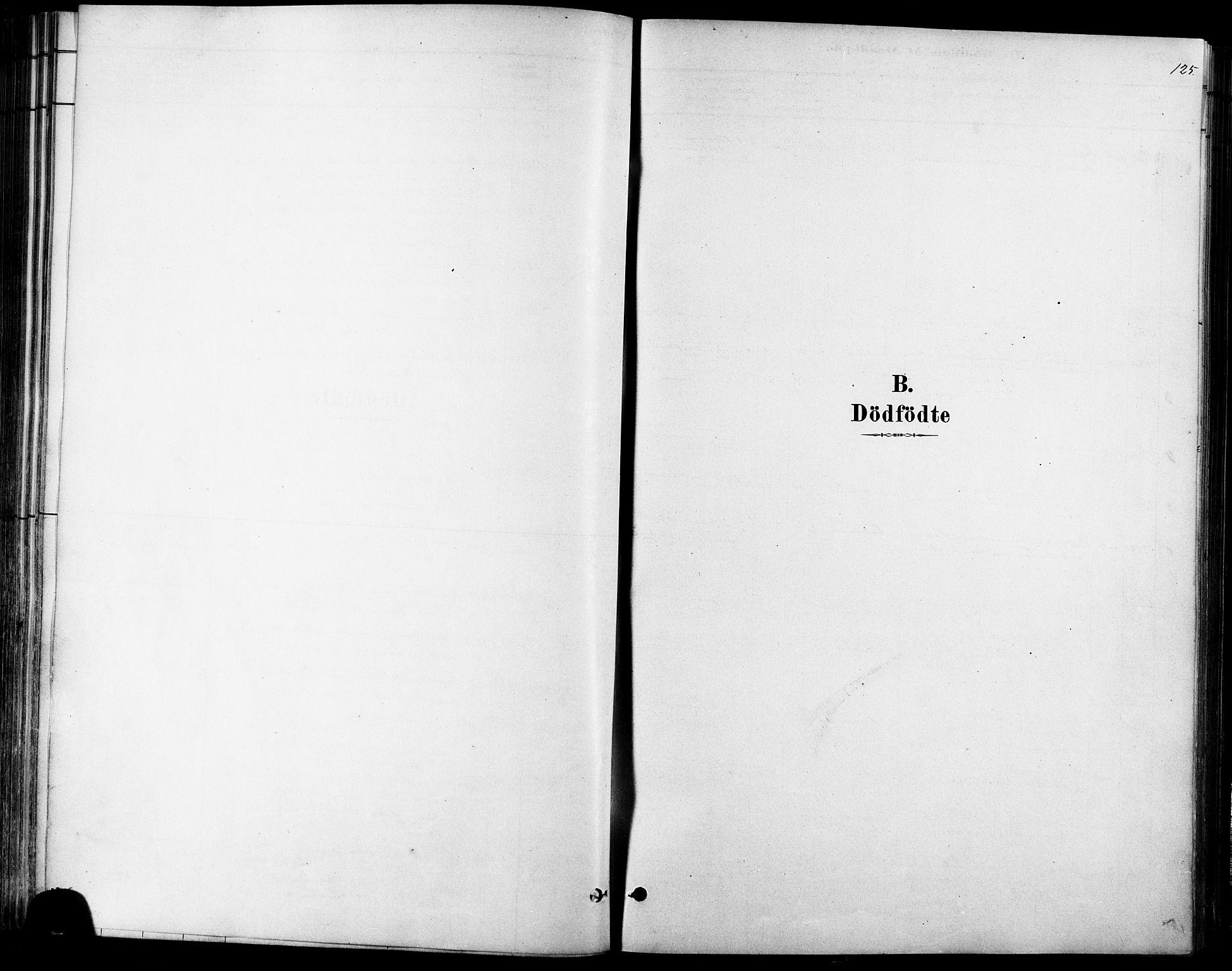 SAT, Ministerialprotokoller, klokkerbøker og fødselsregistre - Møre og Romsdal, 529/L0454: Ministerialbok nr. 529A04, 1878-1885, s. 125