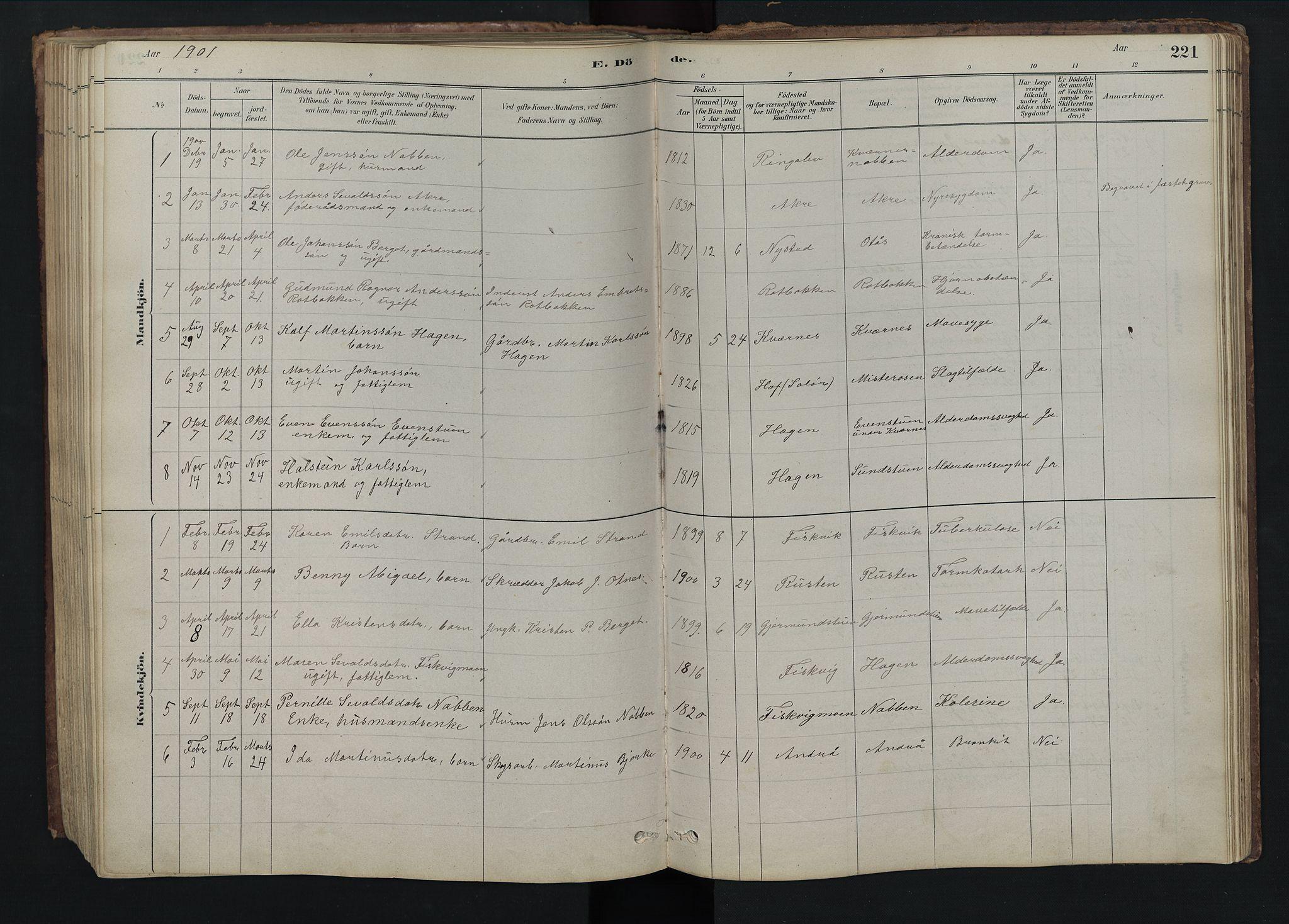SAH, Rendalen prestekontor, H/Ha/Hab/L0009: Klokkerbok nr. 9, 1879-1902, s. 221
