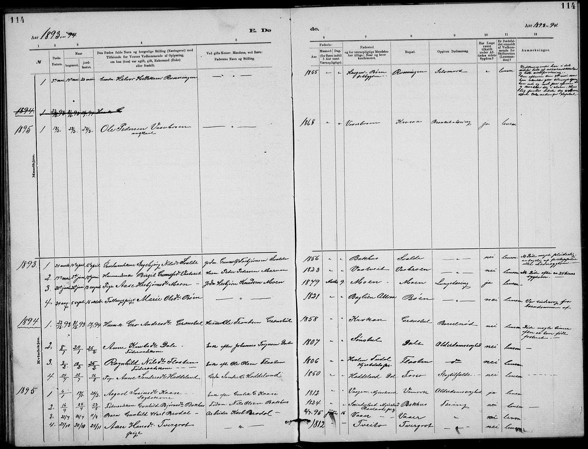 SAKO, Rjukan kirkebøker, G/Ga/L0001: Klokkerbok nr. 1, 1880-1914, s. 114