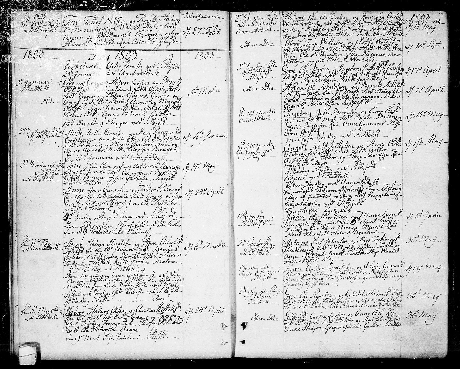 SAKO, Seljord kirkebøker, F/Fa/L0009: Ministerialbok nr. I 9, 1801-1814, s. 12